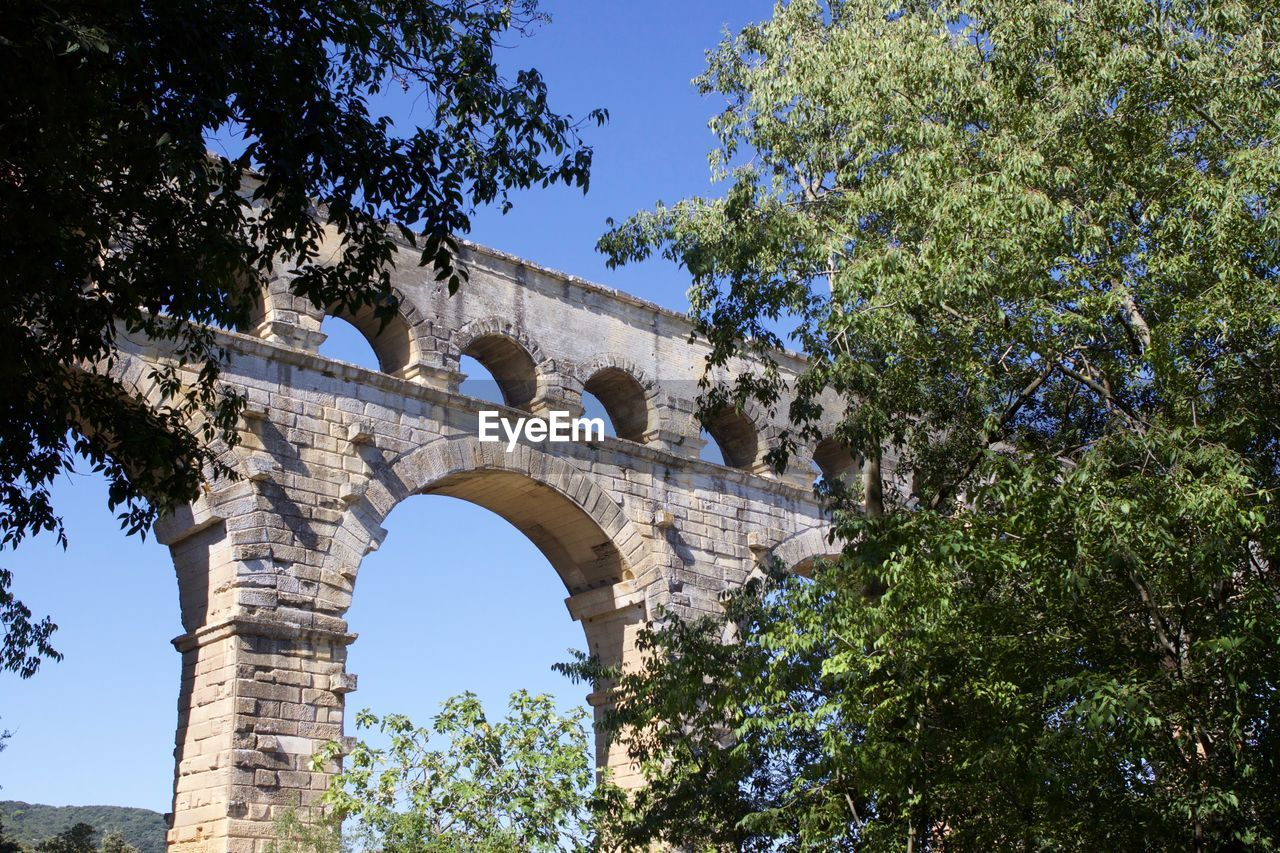 arch, tree, plant, low angle view, built structure, history, the past, architecture, day, ancient, nature, sky, no people, growth, travel destinations, old ruin, travel, clear sky, tourism, outdoors, ancient civilization, ruined, archaeology
