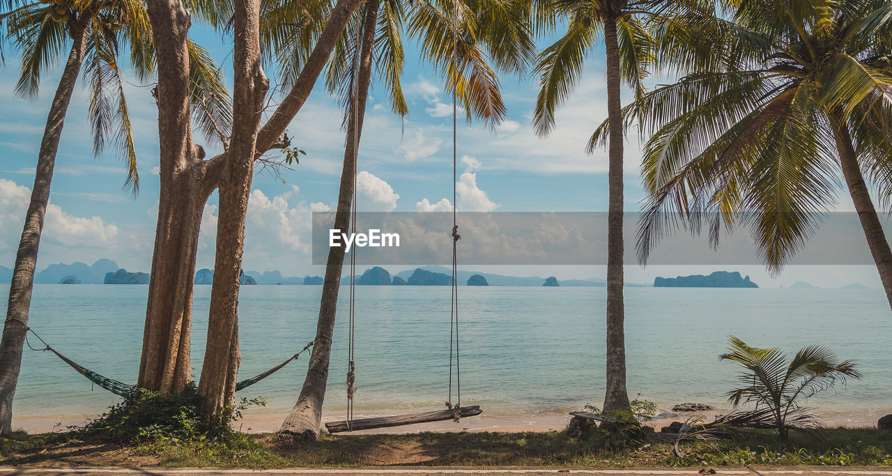 tree, plant, water, palm tree, tropical climate, beauty in nature, sea, sky, scenics - nature, trunk, tranquility, beach, tree trunk, nature, tranquil scene, horizon over water, growth, land, cloud - sky, no people, outdoors, coconut palm tree, tropical tree, palm leaf
