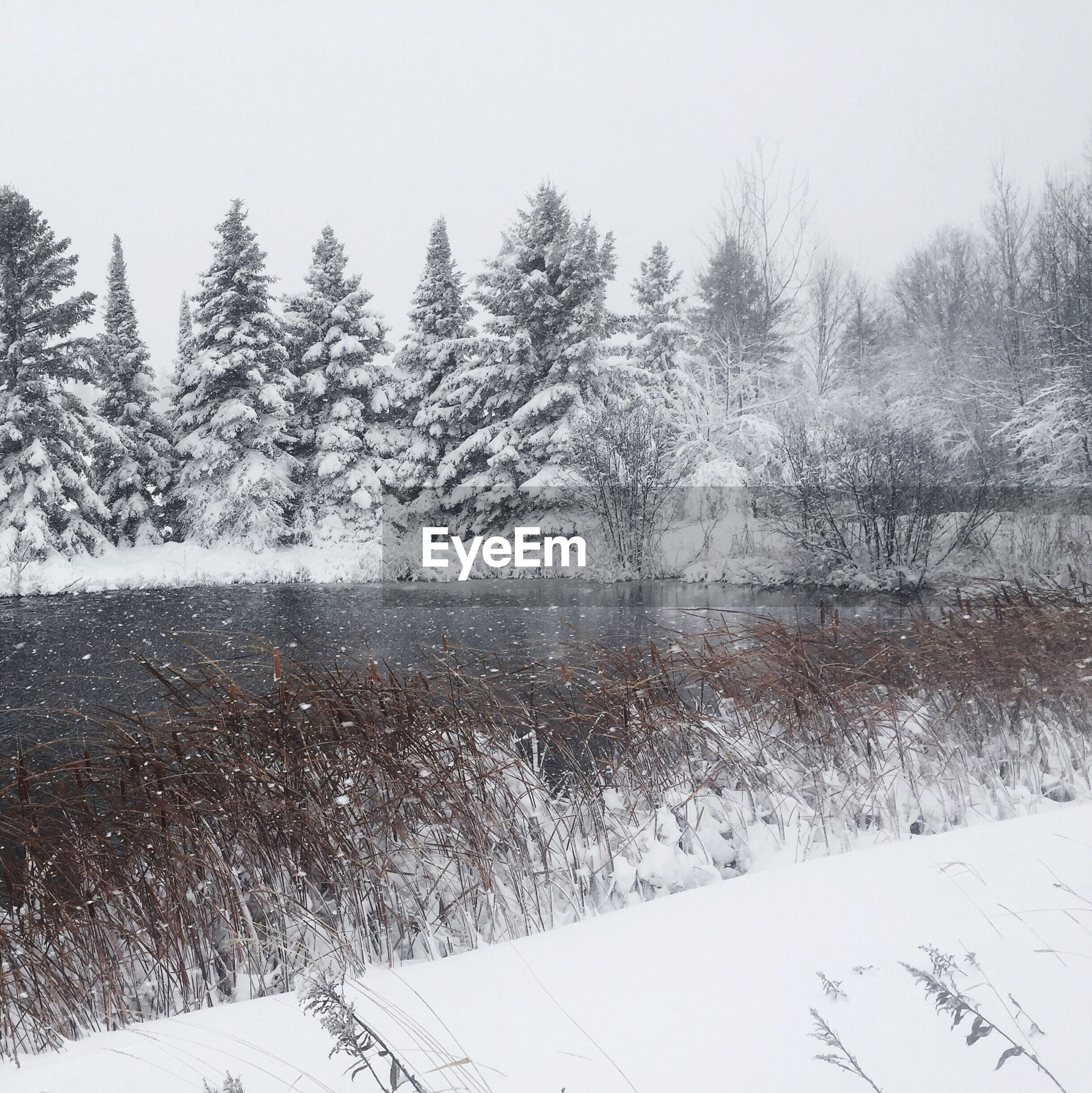 Lake by snow covered trees during winter