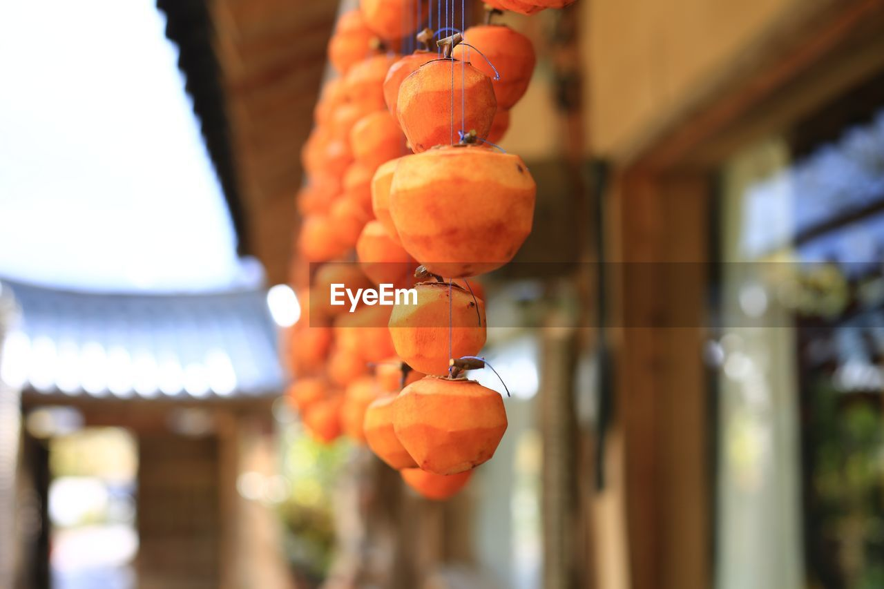 food, healthy eating, food and drink, focus on foreground, fruit, wellbeing, orange color, freshness, hanging, no people, day, persimmon, close-up, built structure, building exterior, outdoors, architecture, nature, selective focus, building, ripe
