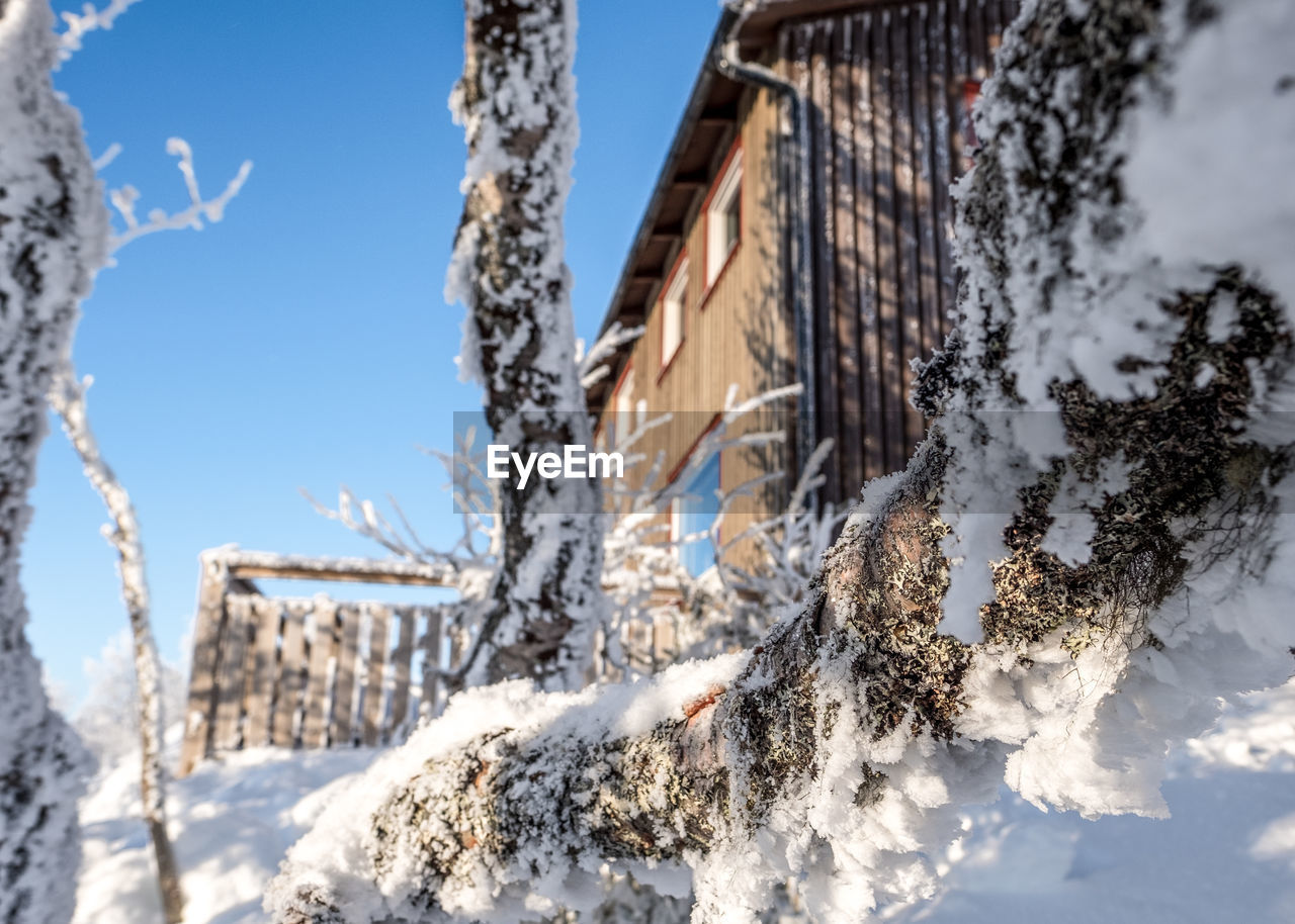 winter, snow, cold temperature, low angle view, architecture, nature, outdoors, building exterior, day, weather, sky, built structure, no people, tree, beauty in nature, frozen, branch, close-up