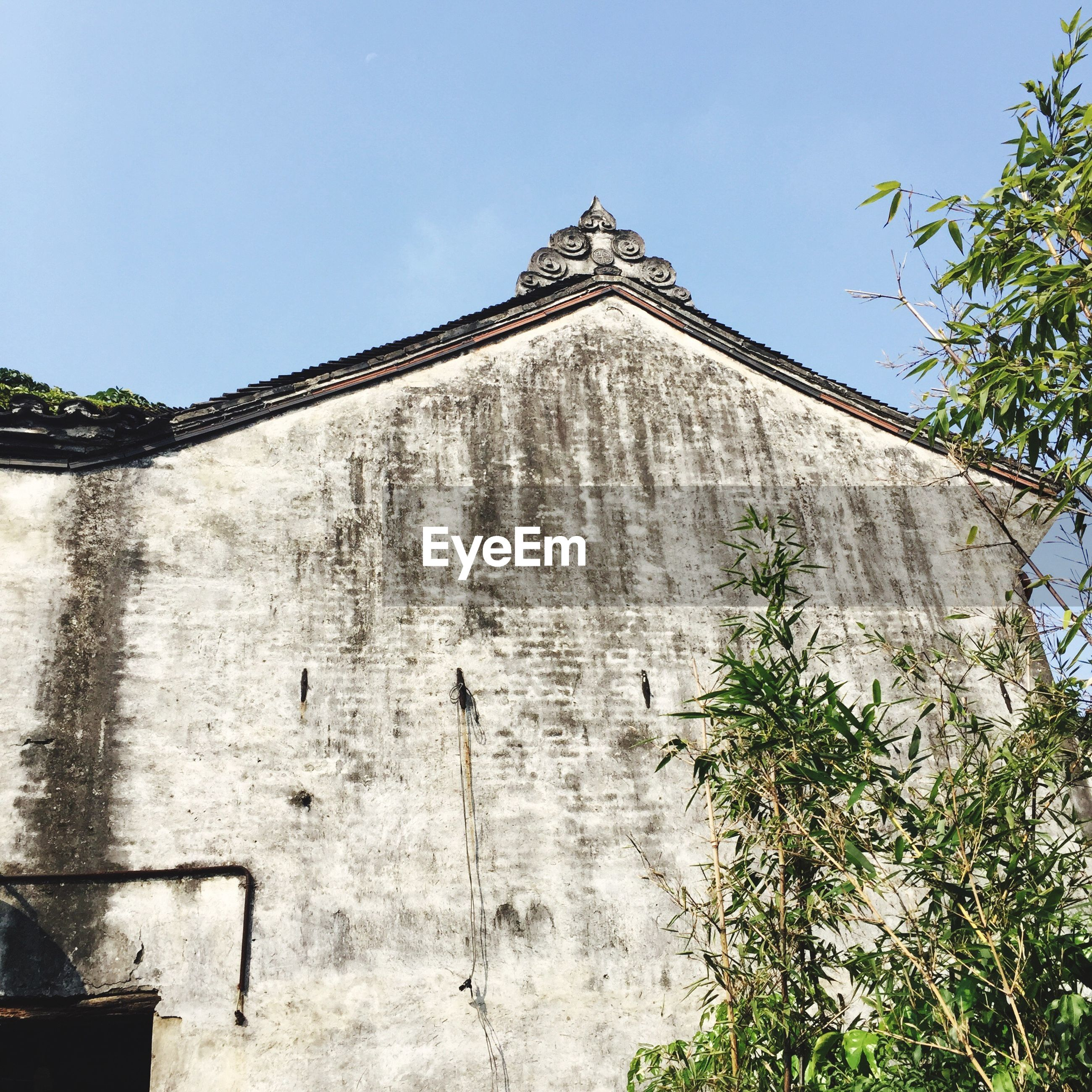 building exterior, built structure, architecture, low angle view, clear sky, wall - building feature, sky, plant, high section, history, growth, the past, blue, day, outdoors, cloud - sky, historic, creeper, fortified wall, no people, green color, exterior