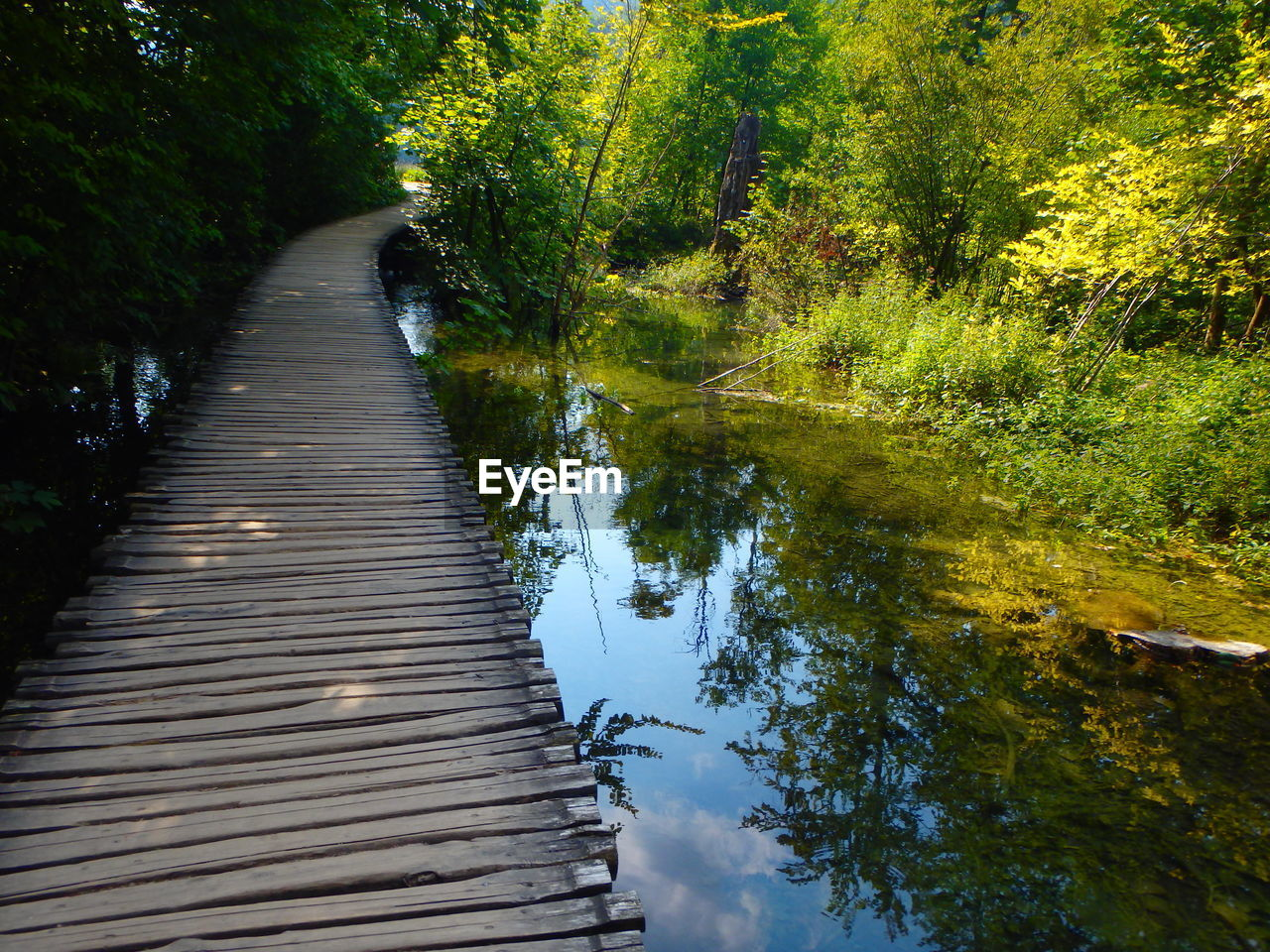 nature, tranquil scene, water, tranquility, tree, the way forward, day, beauty in nature, no people, outdoors, river, autumn, scenics, forest, grass