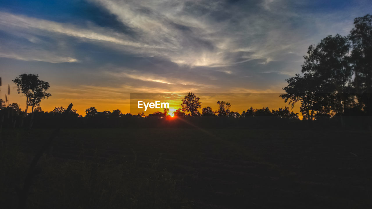 sky, sunset, tree, plant, beauty in nature, cloud - sky, tranquility, tranquil scene, scenics - nature, environment, landscape, nature, silhouette, no people, non-urban scene, land, orange color, field, sunlight, outdoors