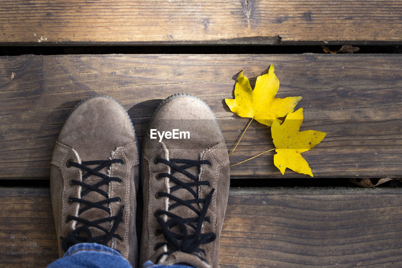 wood - material, yellow, shoe, leaf, plant part, close-up, high angle view, directly above, table, nature, day, personal perspective, human body part, flowering plant, flower, pair, autumn, indoors, plant, change, wood, leaves, maple leaf
