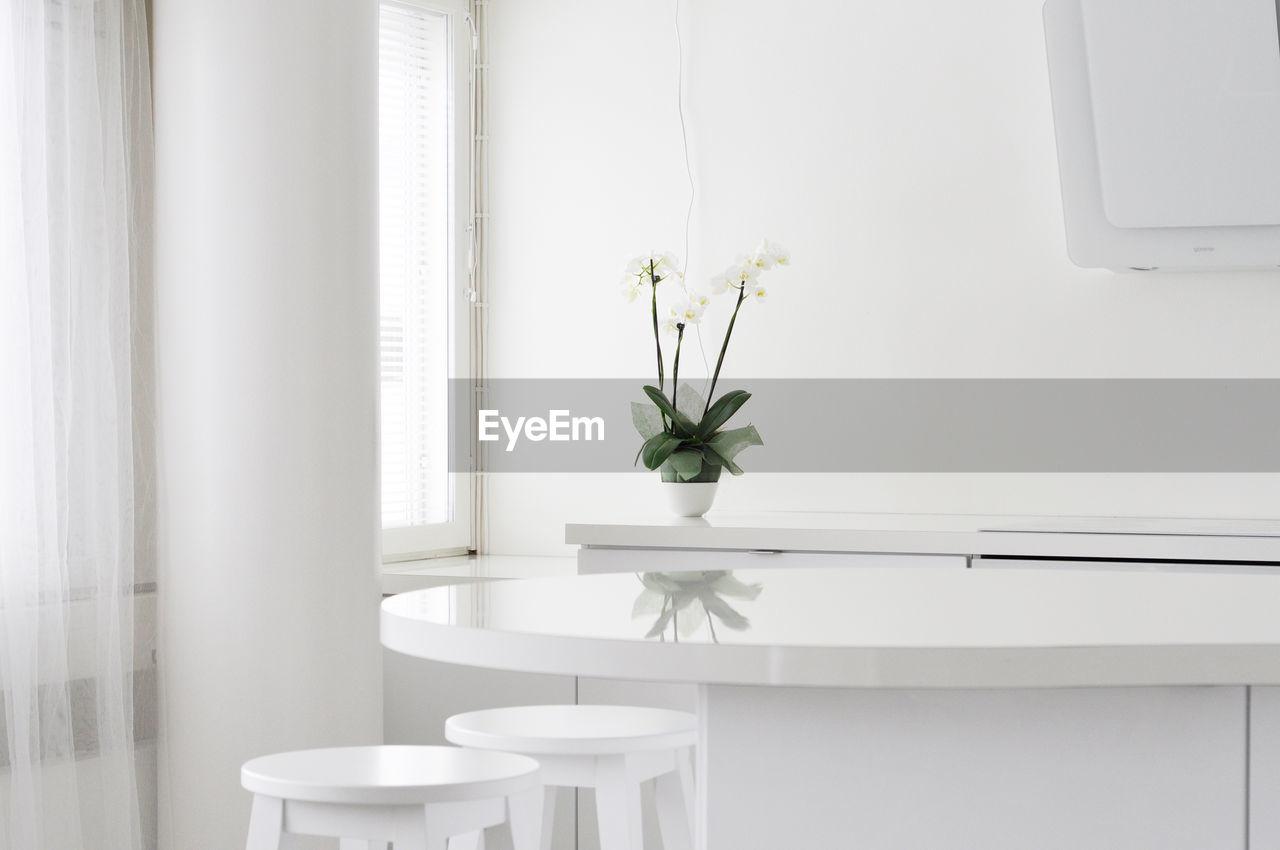 White Flower Vase On Table At Home