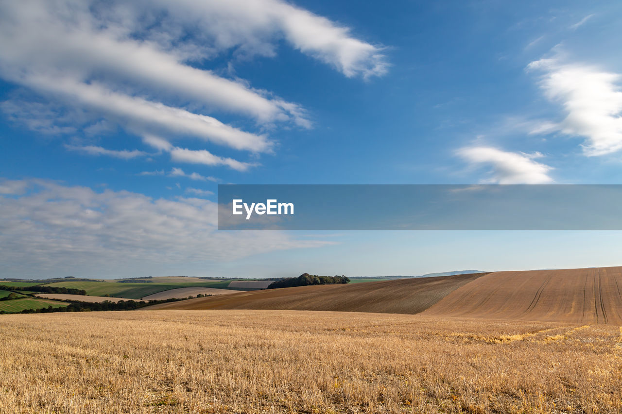 sky, landscape, cloud - sky, tranquil scene, environment, tranquility, land, beauty in nature, field, scenics - nature, rural scene, agriculture, no people, day, nature, horizon, horizon over land, plant, growth, non-urban scene