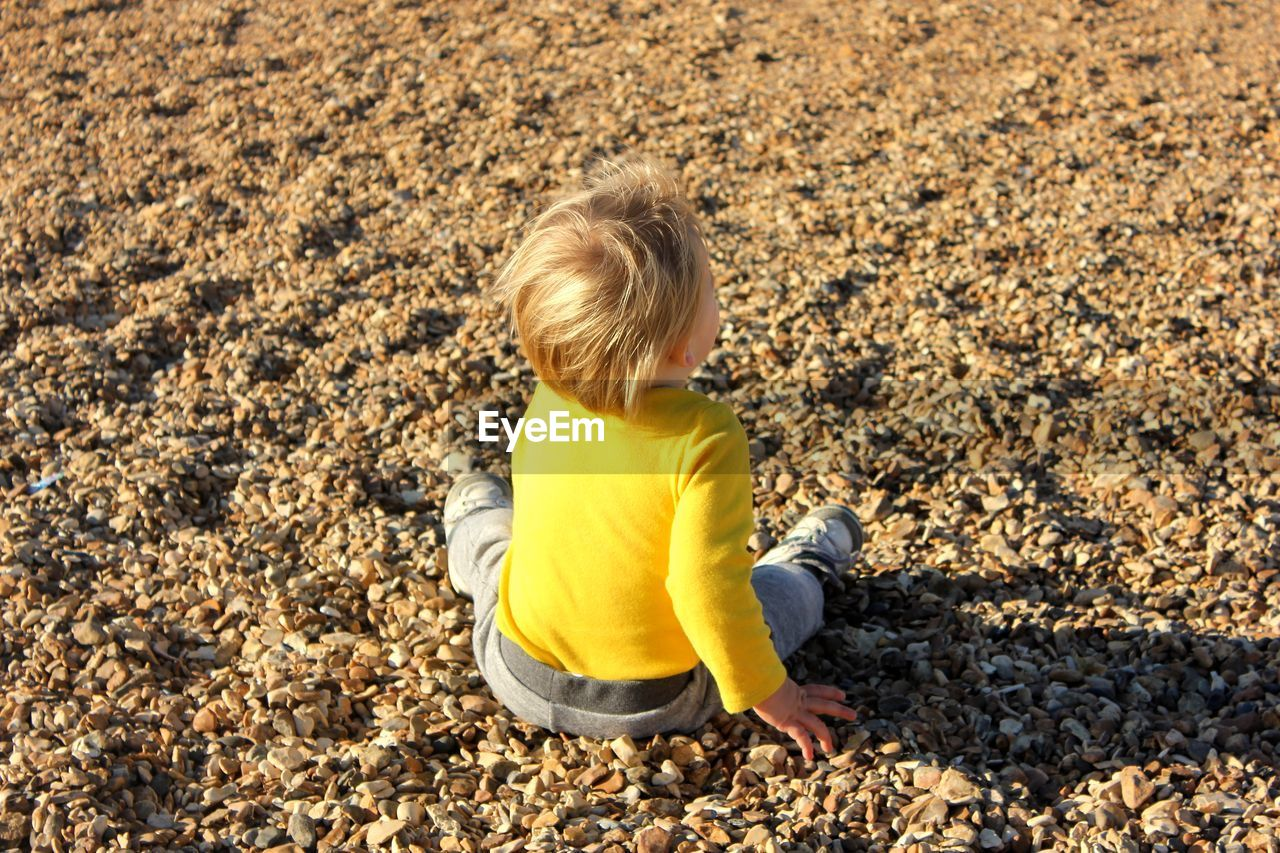 Rear View Of Baby Boy Sitting On Pebbles At Beach