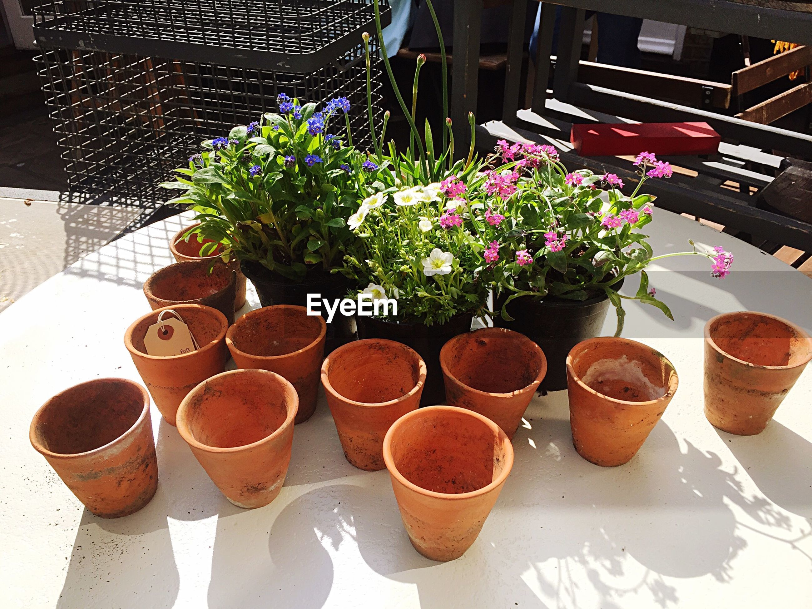 High angle view of empty terracotta pots by flowering plants