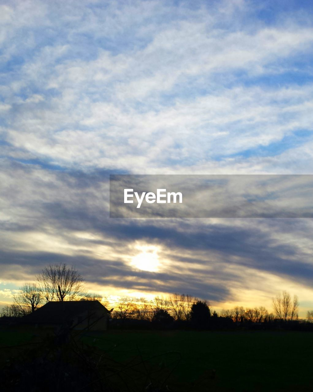 sunset, sky, tranquil scene, cloud - sky, scenics, silhouette, nature, beauty in nature, tranquility, no people, field, landscape, tree, outdoors, grass, day