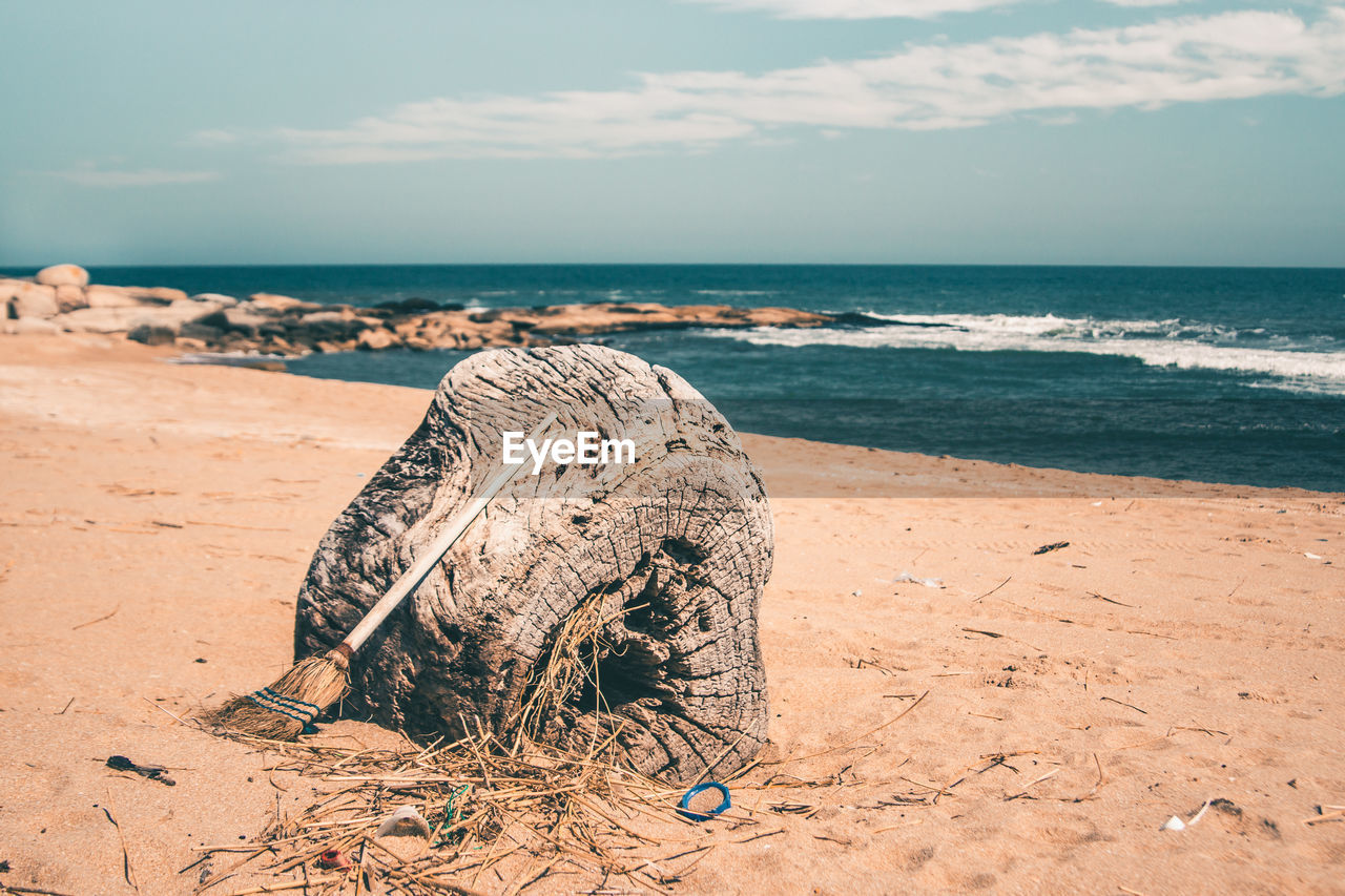 sea, land, water, beach, sky, horizon, nature, horizon over water, beauty in nature, scenics - nature, sand, day, tranquility, sunlight, tranquil scene, no people, non-urban scene, outdoors, cloud - sky, driftwood