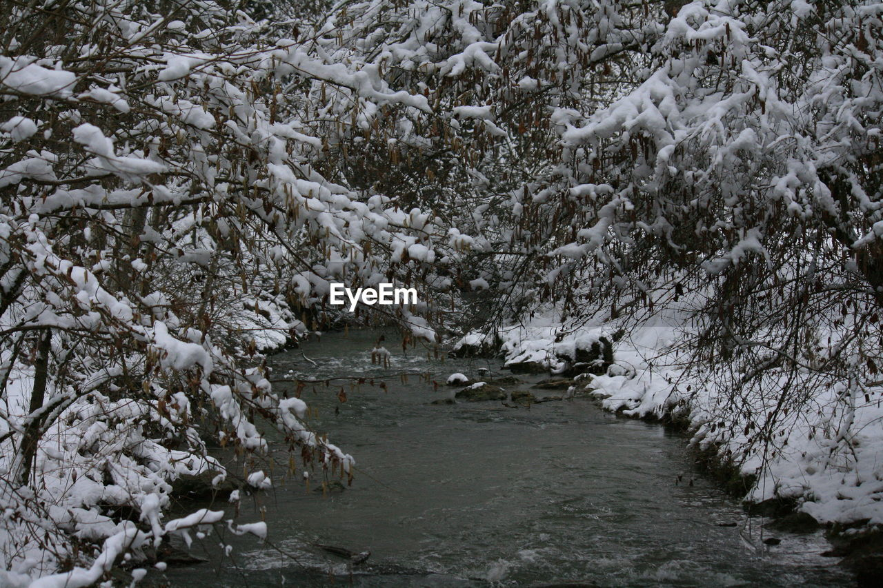 nature, cold temperature, river, tree, snow, winter, no people, outdoors, beauty in nature, water, tranquility, day, scenics