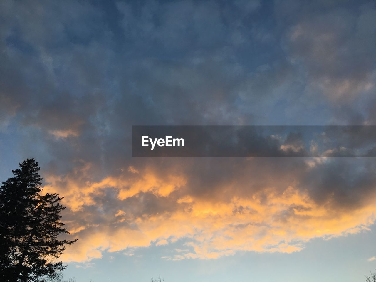cloud - sky, beauty in nature, sky, nature, tranquility, scenics, tranquil scene, sunset, no people, low angle view, tree, outdoors, day
