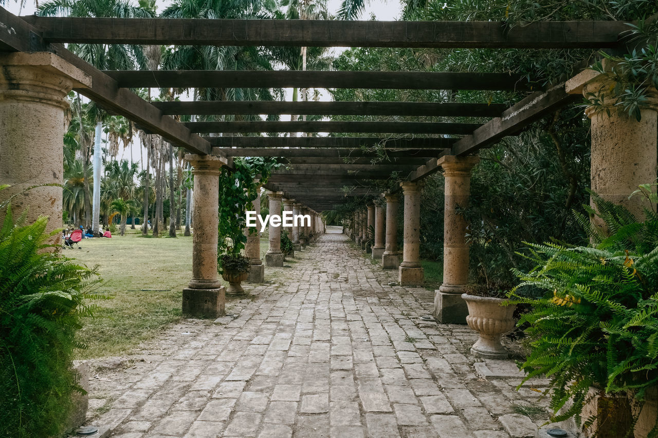 direction, architecture, the way forward, built structure, footpath, plant, diminishing perspective, day, no people, architectural column, nature, outdoors, empty, in a row, tree, growth, park, park - man made space, stone, vanishing point, paving stone, colonnade