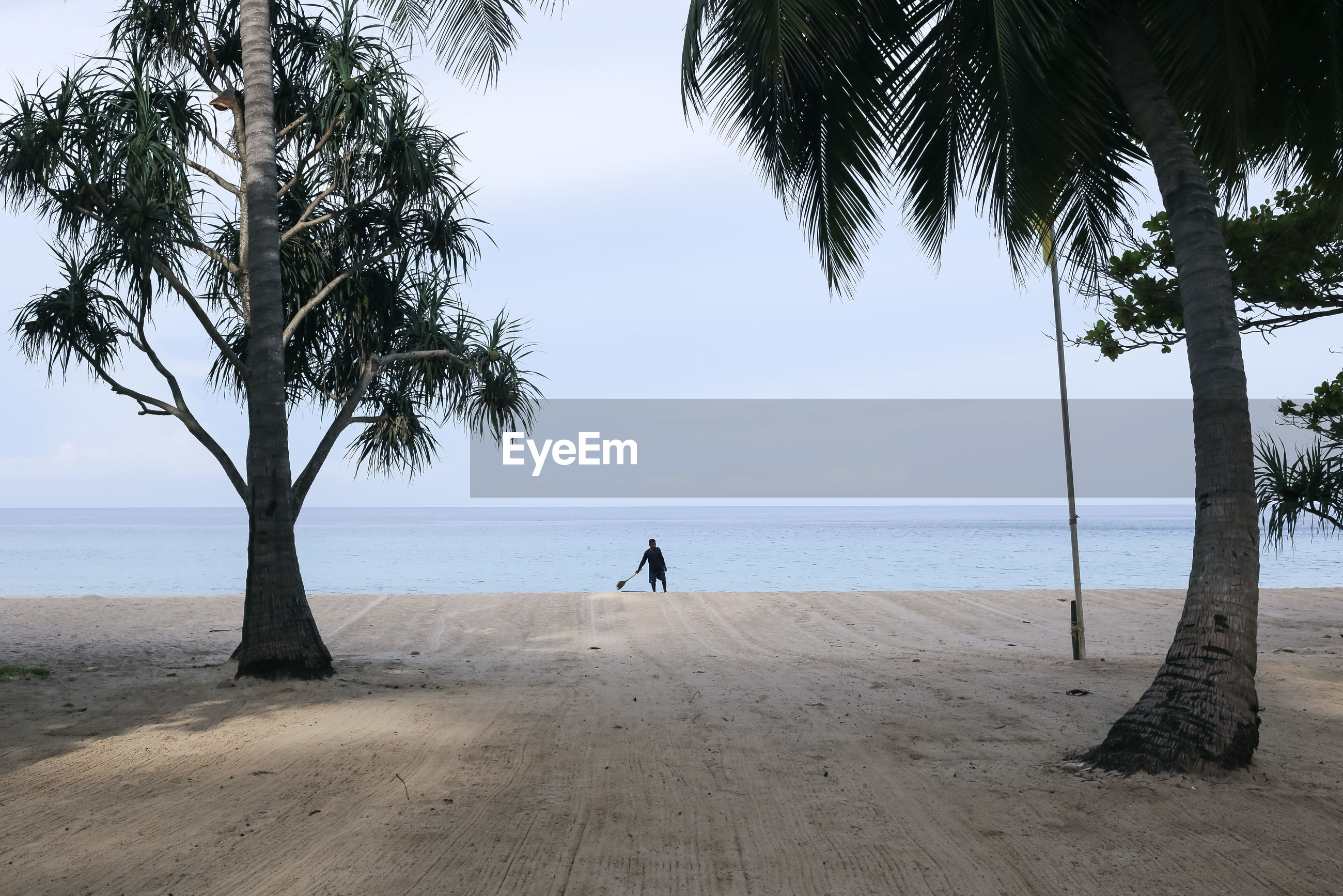 tree, sea, beach, water, horizon over water, full length, real people, palm tree, beauty in nature, nature, scenics, one person, sand, growth, sky, standing, tree trunk, lifestyles, day, outdoors, men, branch, people