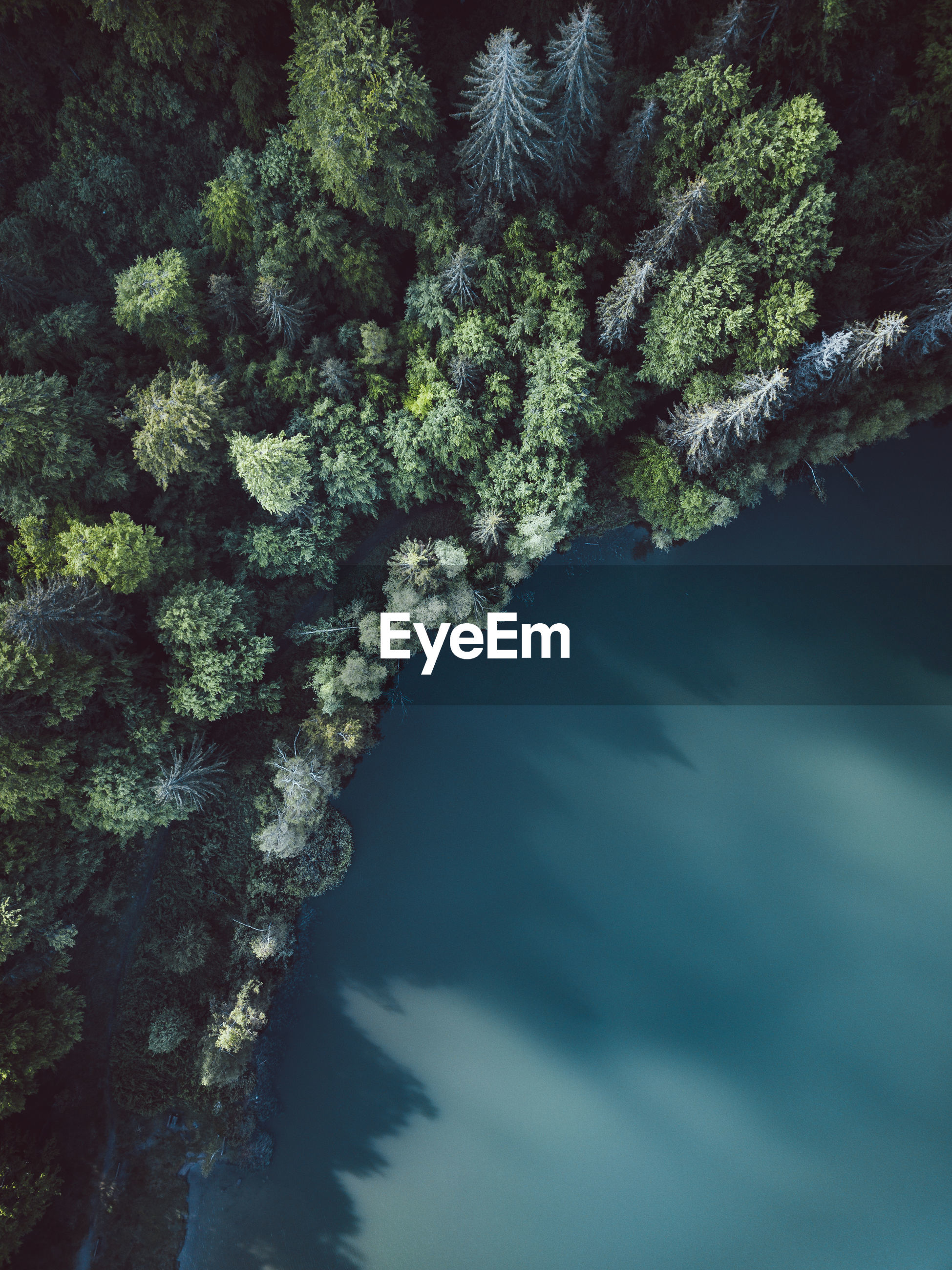 Aerial view of blue lakes and green forests on a sunny summer day at lake sfanta ana, transylvania