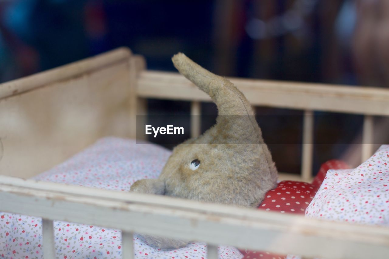 Elephant Toy In Crib