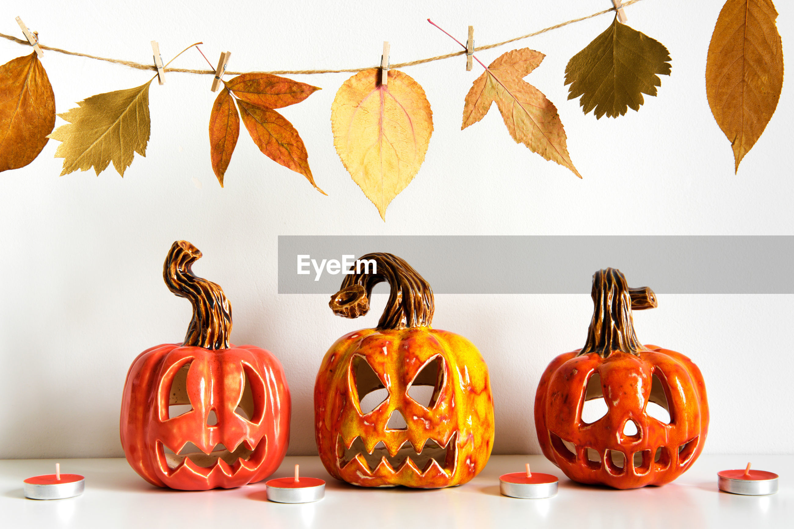 VIEW OF PUMPKINS AGAINST WHITE BACKGROUND