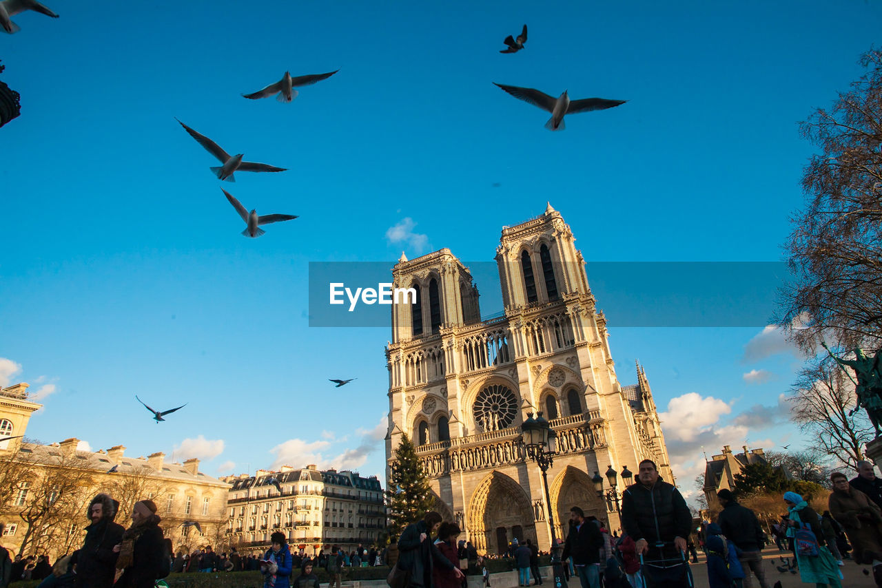 architecture, flying, building exterior, built structure, religion, bird, large group of animals, animals in the wild, low angle view, history, place of worship, spirituality, large group of people, real people, travel destinations, outdoors, day, men, sky, women, city, people