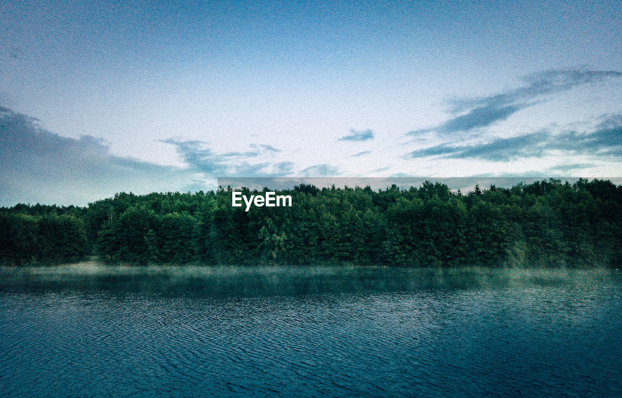 sky, tree, plant, scenics - nature, water, tranquility, tranquil scene, beauty in nature, cloud - sky, lake, nature, day, no people, non-urban scene, waterfront, forest, growth, outdoors, blue