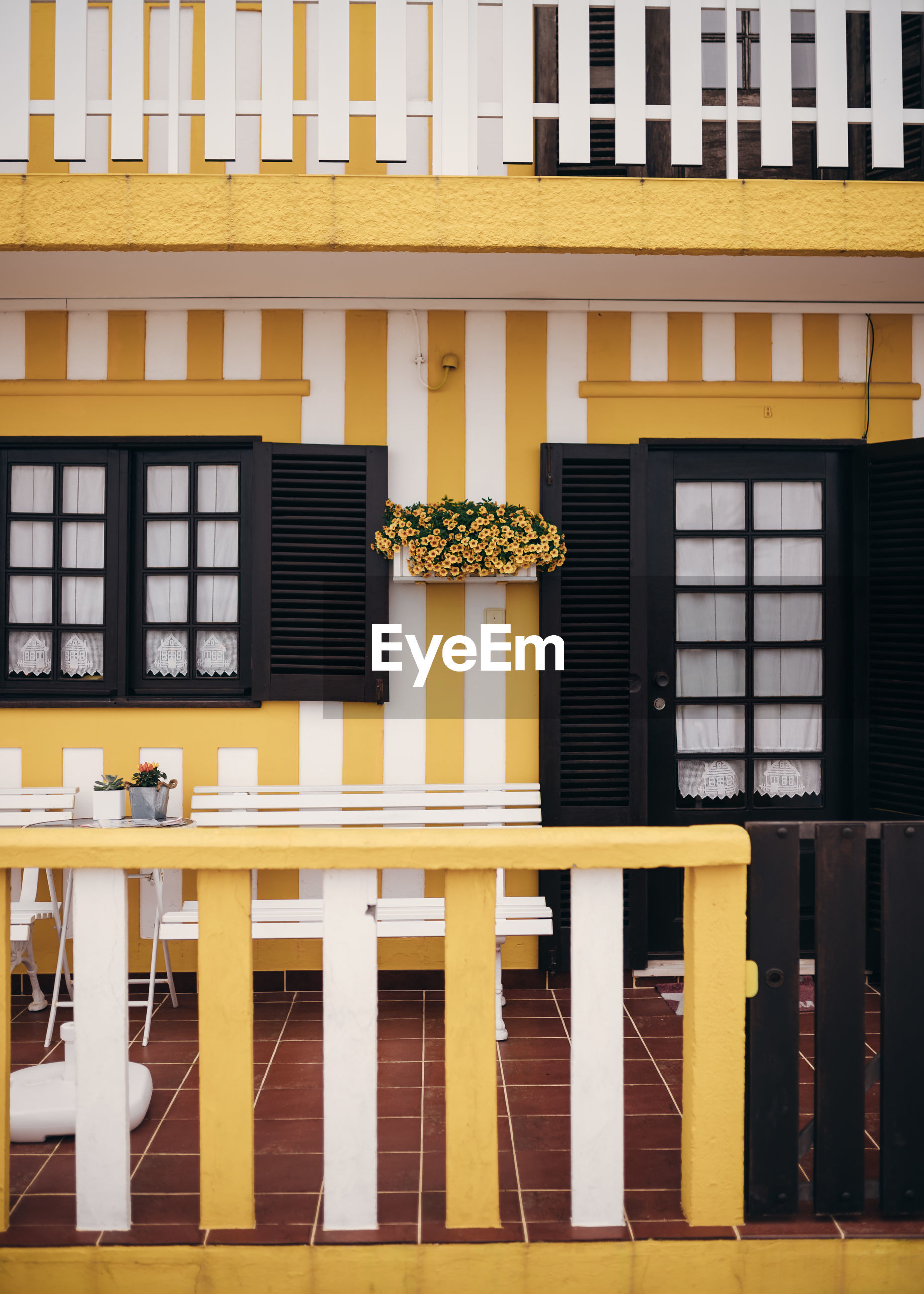 Potted plants on balcony of yellow striped building