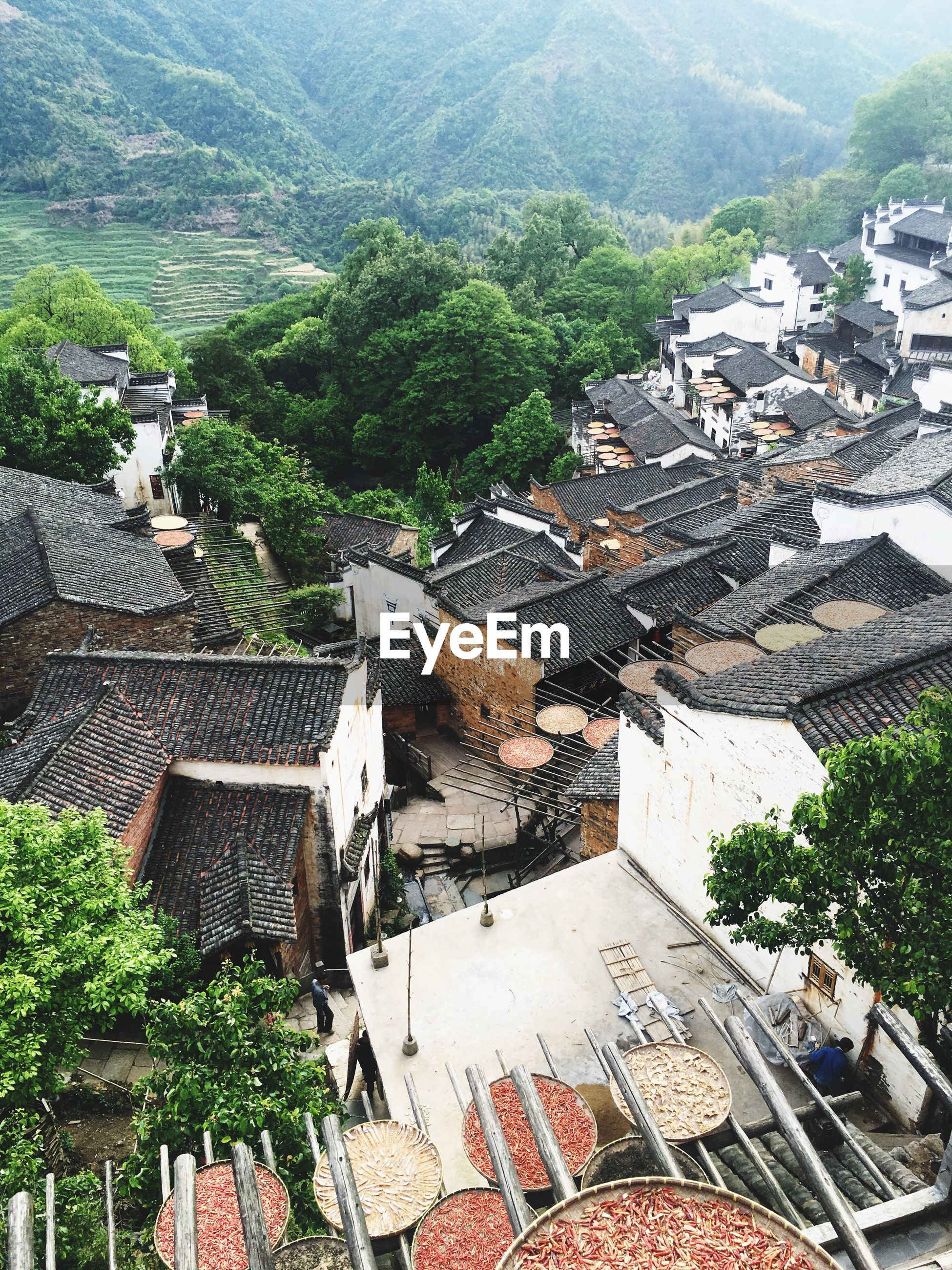 building exterior, built structure, architecture, high angle view, mountain, tree, house, roof, town, residential structure, residential building, mountain range, residential district, day, outdoors, nature, growth, sunlight, no people, tranquility