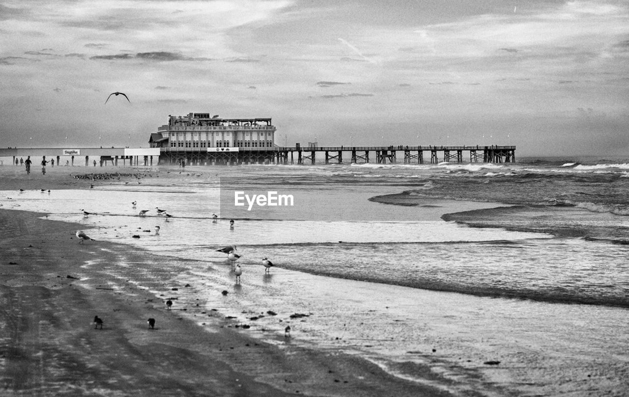 sea, beach, water, sky, cloud - sky, architecture, built structure, sand, travel destinations, day, outdoors, horizon over water, nature, building exterior, scenics, animal themes, large group of people, wave, bird, beauty in nature, people