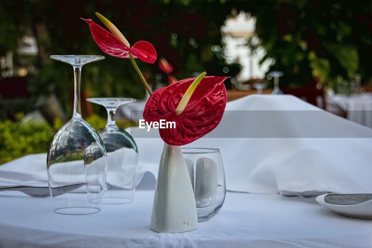 Close-Up Of Flamingo Lilies In Vase On Table