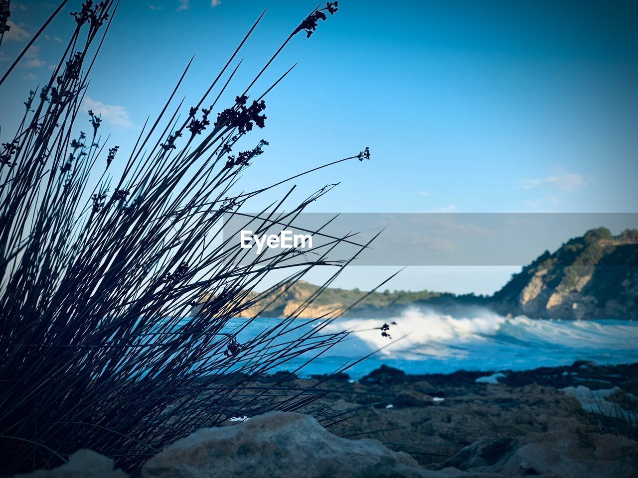 sky, nature, water, cloud - sky, no people, sea, plant, day, cable, beauty in nature, tree, outdoors, scenics - nature, blue, transportation, motion, rock, electricity, tranquility