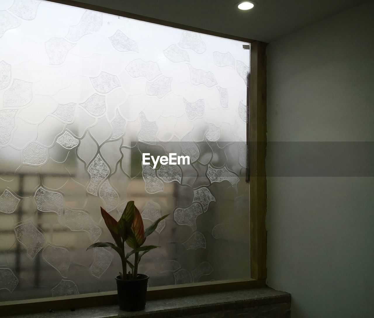 indoors, window, home interior, no people, close-up, day, architecture