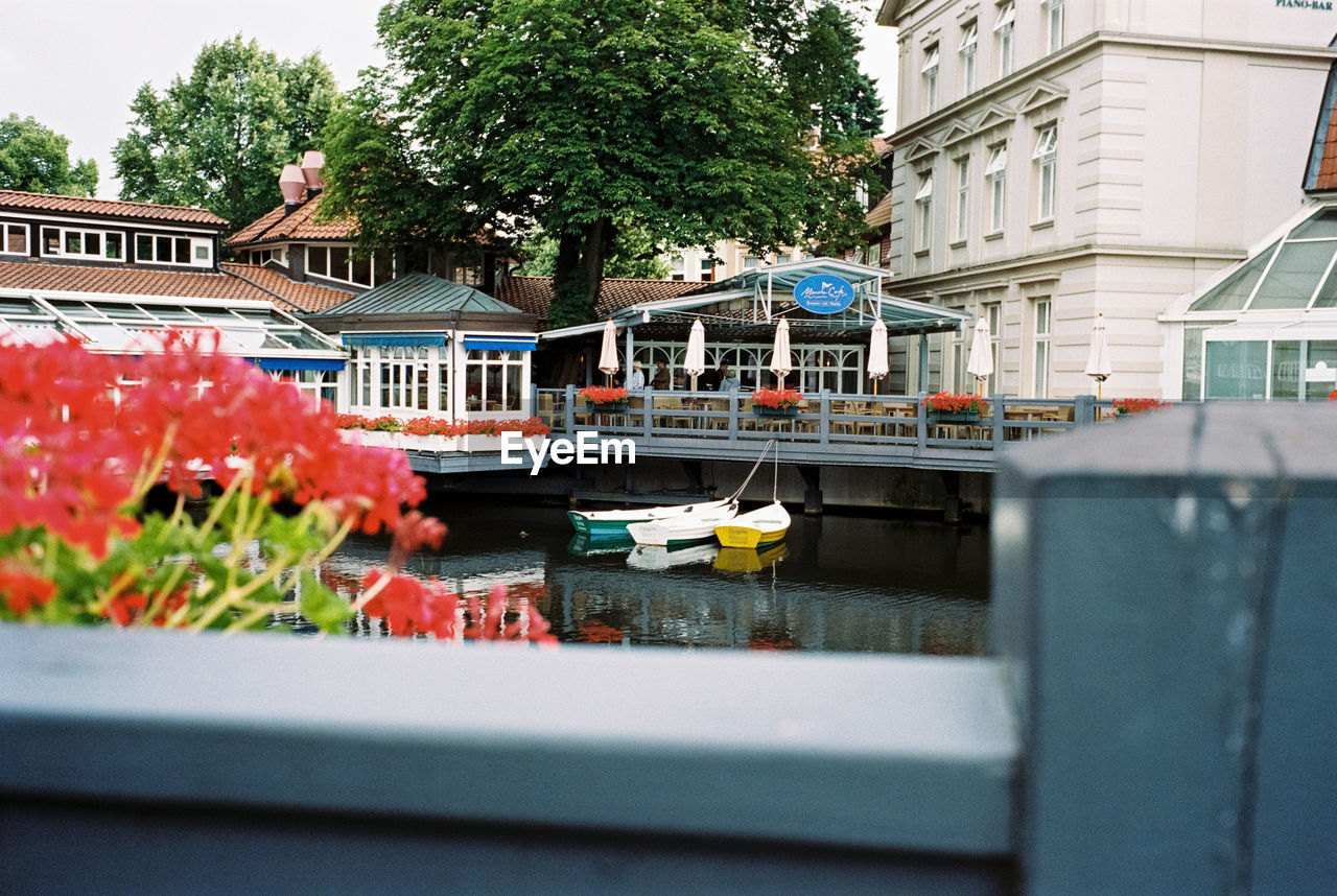 built structure, architecture, plant, building exterior, flower, flowering plant, nature, day, city, transportation, selective focus, mode of transportation, water, incidental people, tree, building, outdoors, growth, canal, flower head, surface level