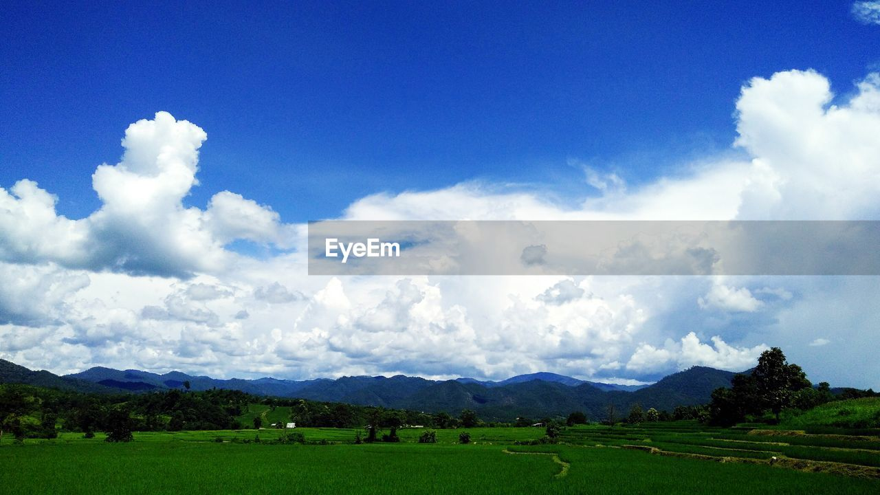 cloud - sky, sky, nature, beauty in nature, tranquil scene, field, scenics, tranquility, landscape, grass, day, blue, mountain, no people, outdoors, tree, agriculture