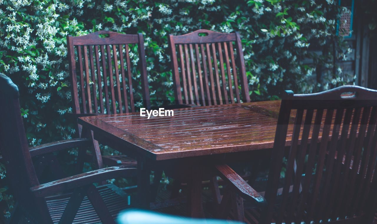 chair, empty, table, wood - material, absence, seat, furniture, no people, day, outdoors, plant, tree, nature, close-up