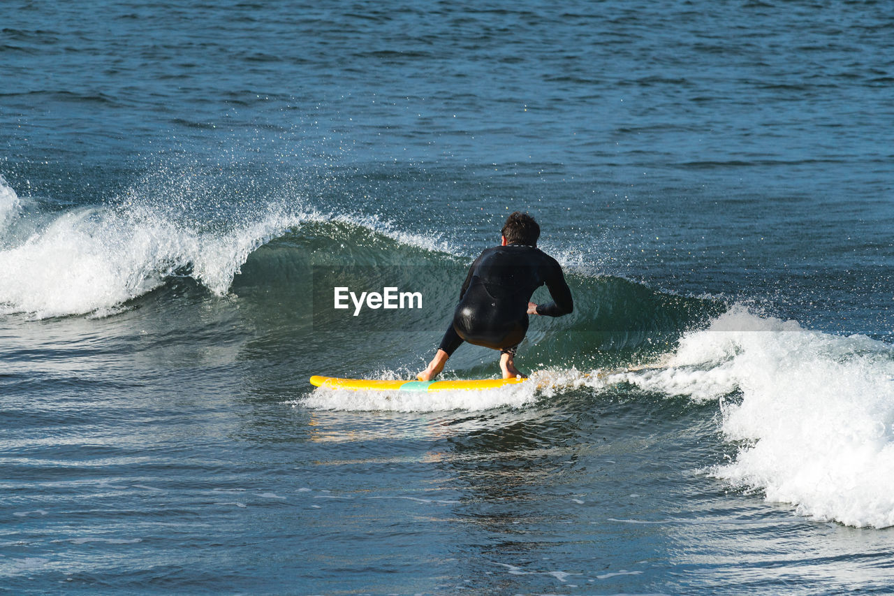 sport, water, motion, one person, sea, surfing, aquatic sport, real people, wave, leisure activity, waterfront, lifestyles, rear view, adventure, extreme sports, men, beauty in nature, day, outdoors, skill