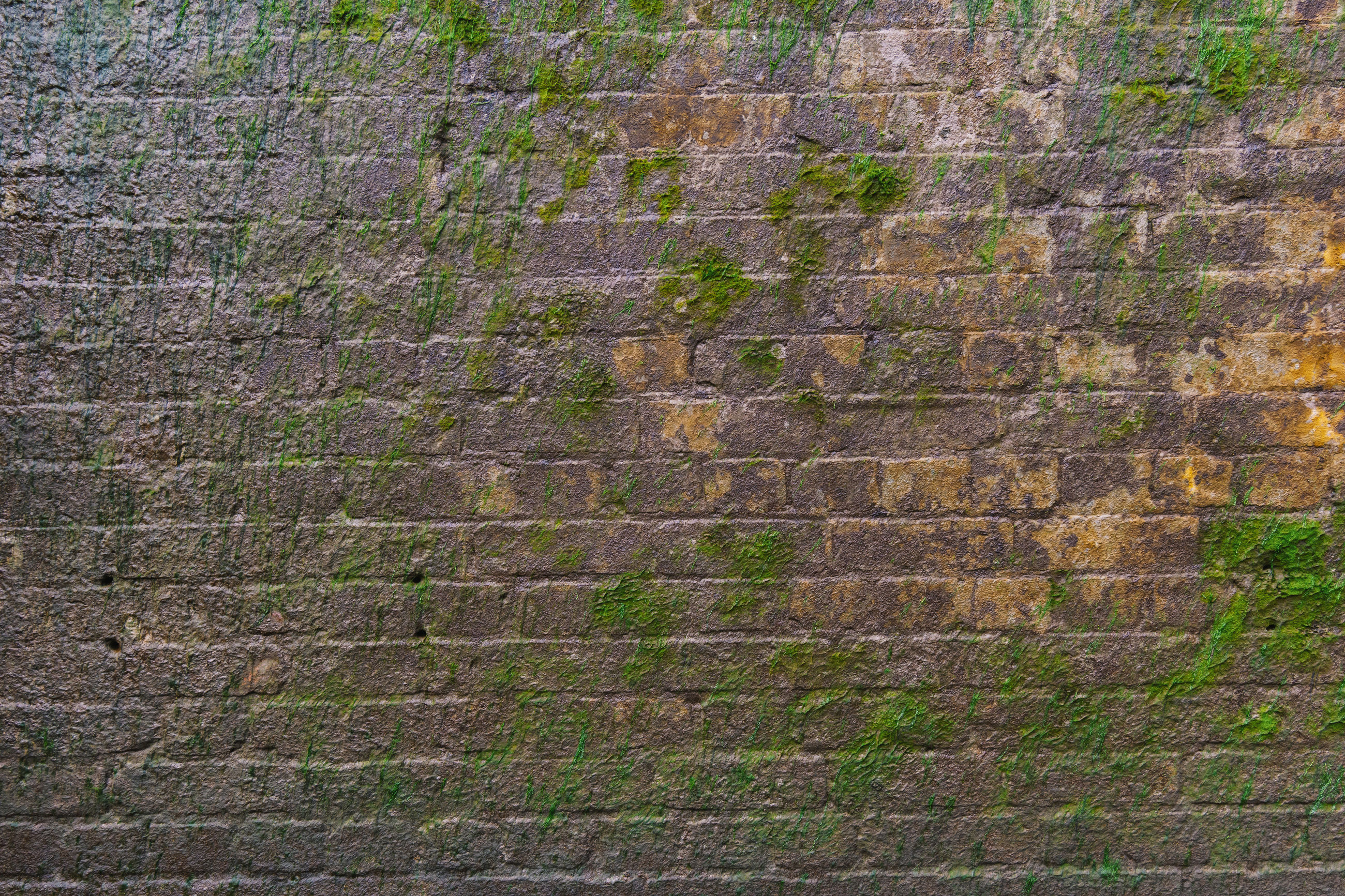 Full frame shot of weathered brick wall