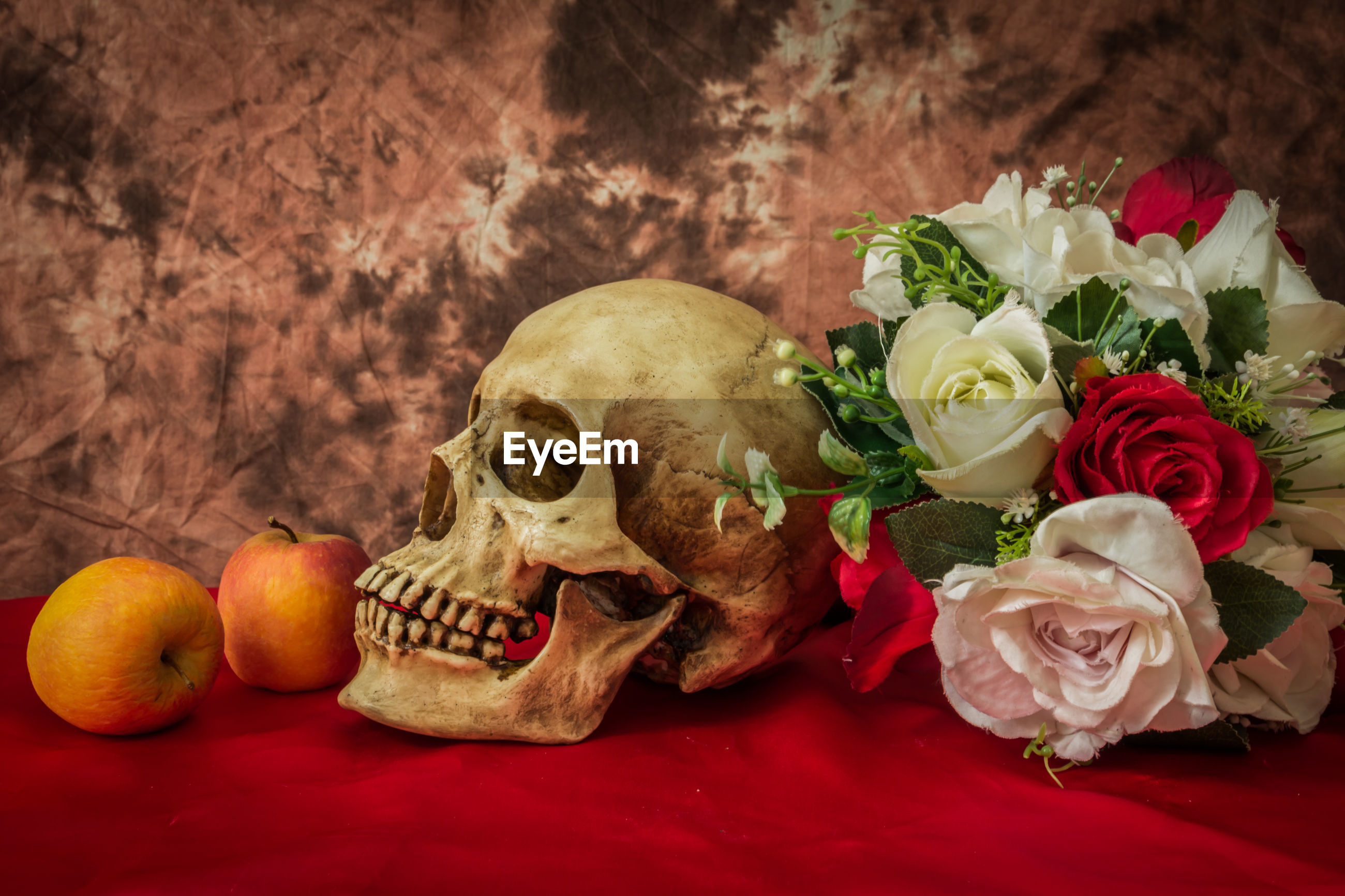 Still life with skull man
