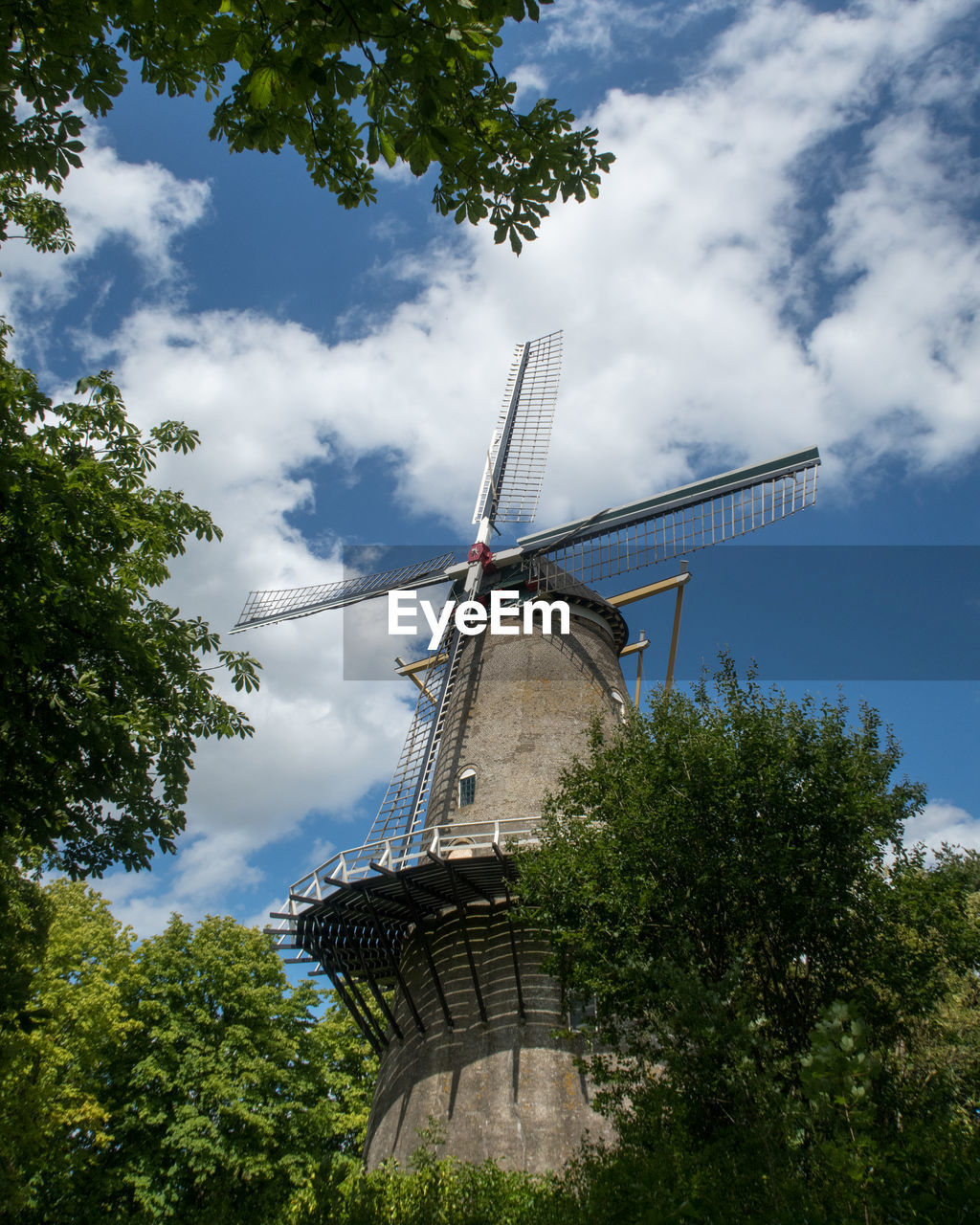 sky, renewable energy, tree, low angle view, fuel and power generation, cloud - sky, environmental conservation, alternative energy, turbine, wind turbine, nature, wind power, plant, built structure, architecture, traditional windmill, environment, day, technology, no people, outdoors