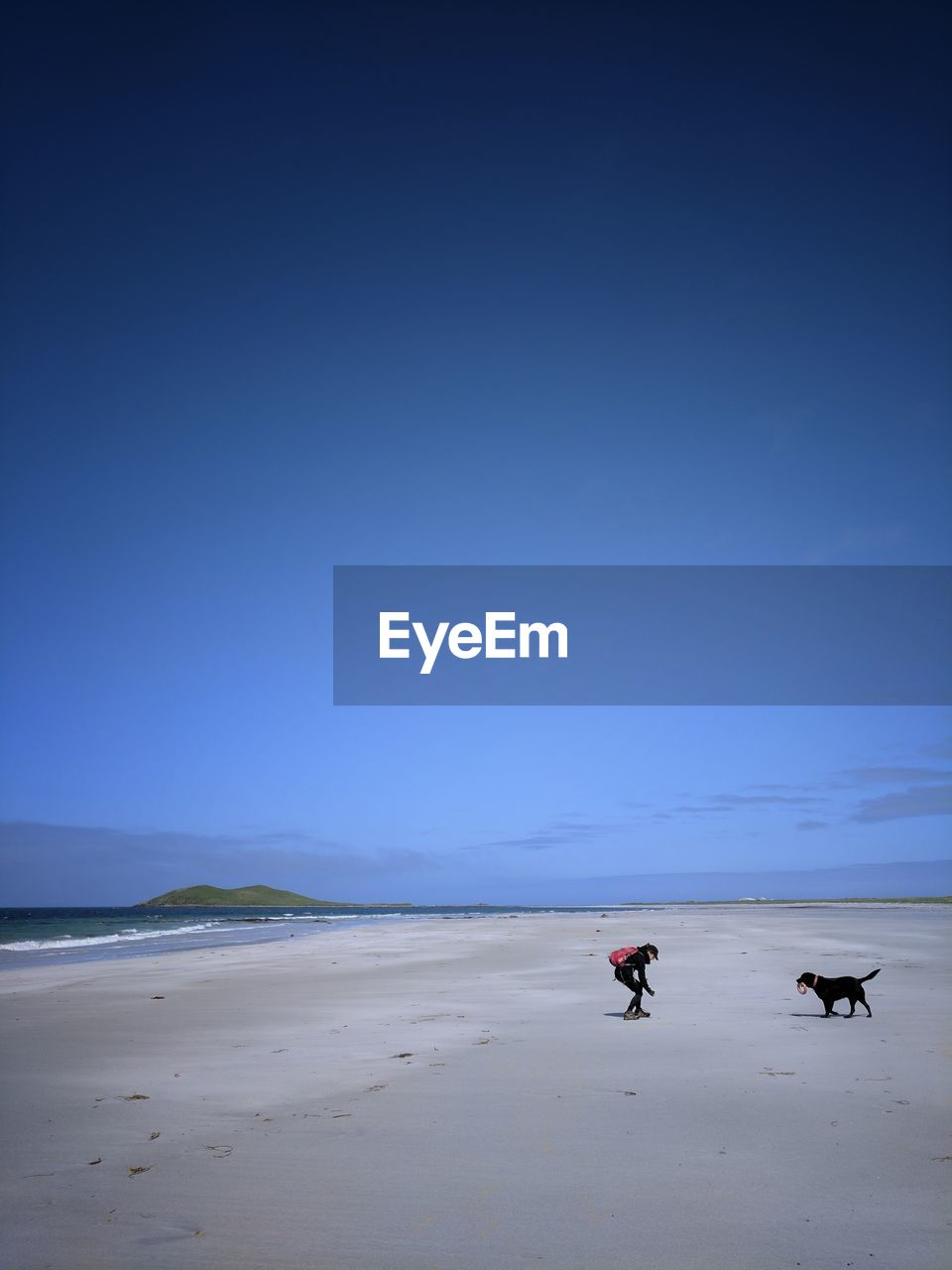Woman With Dog At Beach Against Clear Blue Sky