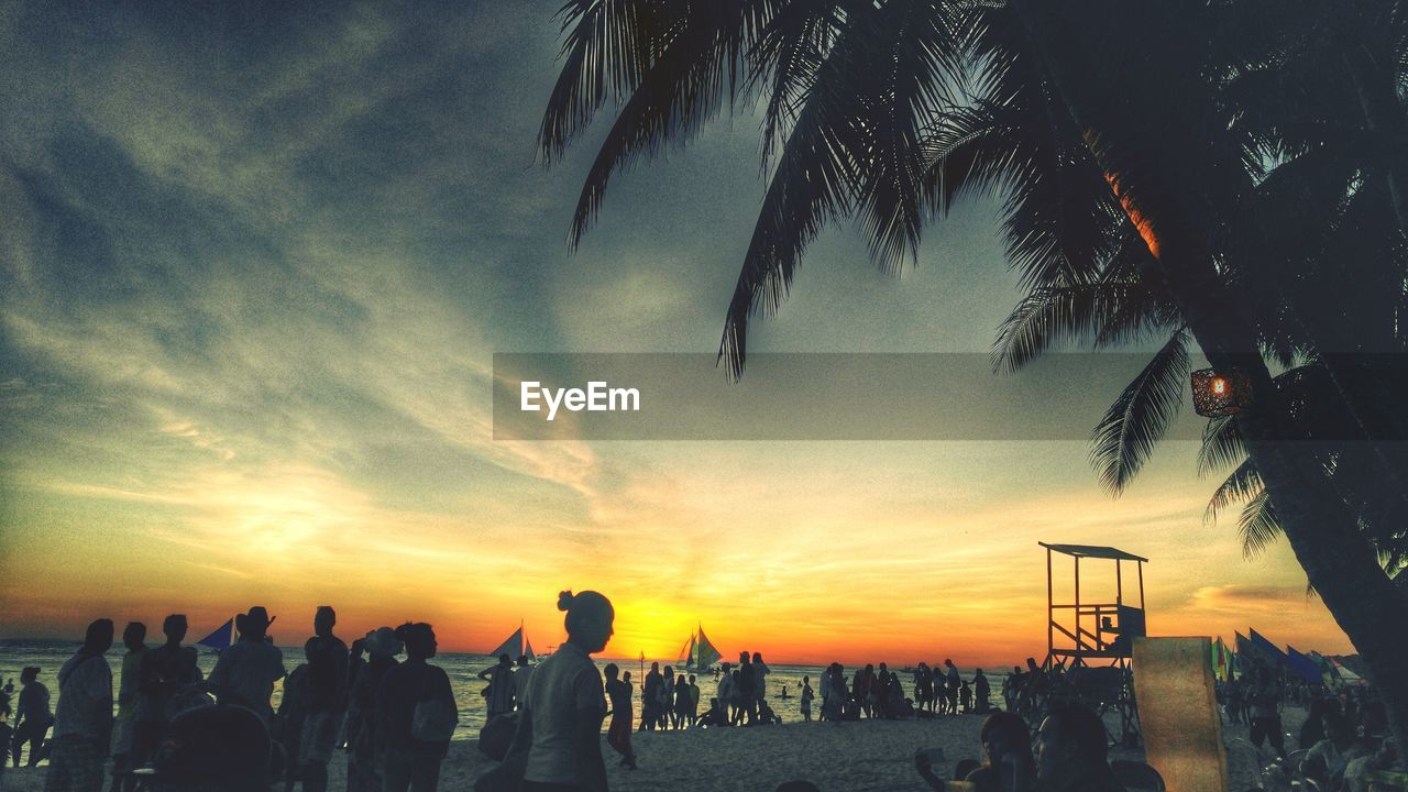 sunset, large group of people, sky, real people, cloud - sky, men, tree, leisure activity, nature, lifestyles, outdoors, beauty in nature, palm tree, silhouette, women, scenics, vacations, crowd, day, people