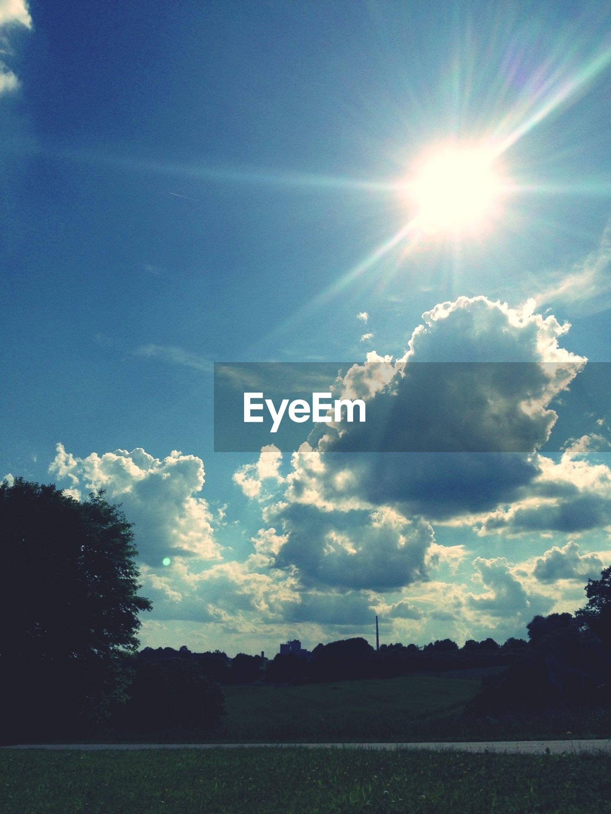 sun, sunbeam, sunlight, sky, tranquility, lens flare, tranquil scene, beauty in nature, scenics, blue, sunny, landscape, nature, field, tree, bright, cloud - sky, cloud, grass, day