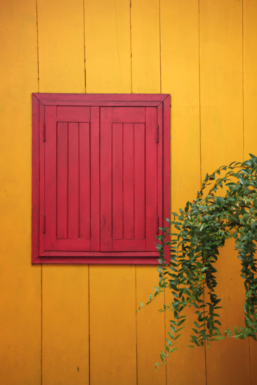yellow, wall - building feature, built structure, plant, architecture, no people, flower, flowering plant, day, wood - material, building exterior, pink color, nature, outdoors, closed, entrance, building, door, growth, house, purple, flower pot