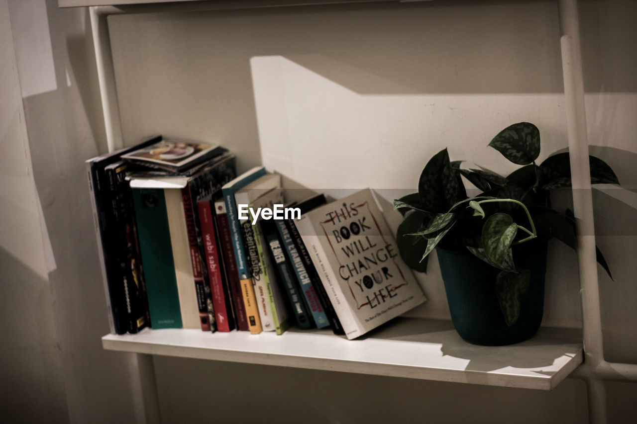 book, publication, indoors, shelf, no people, still life, bookshelf, potted plant, home interior, literature, large group of objects, text, education, close-up, table, choice, home, plant part, variation, leaf