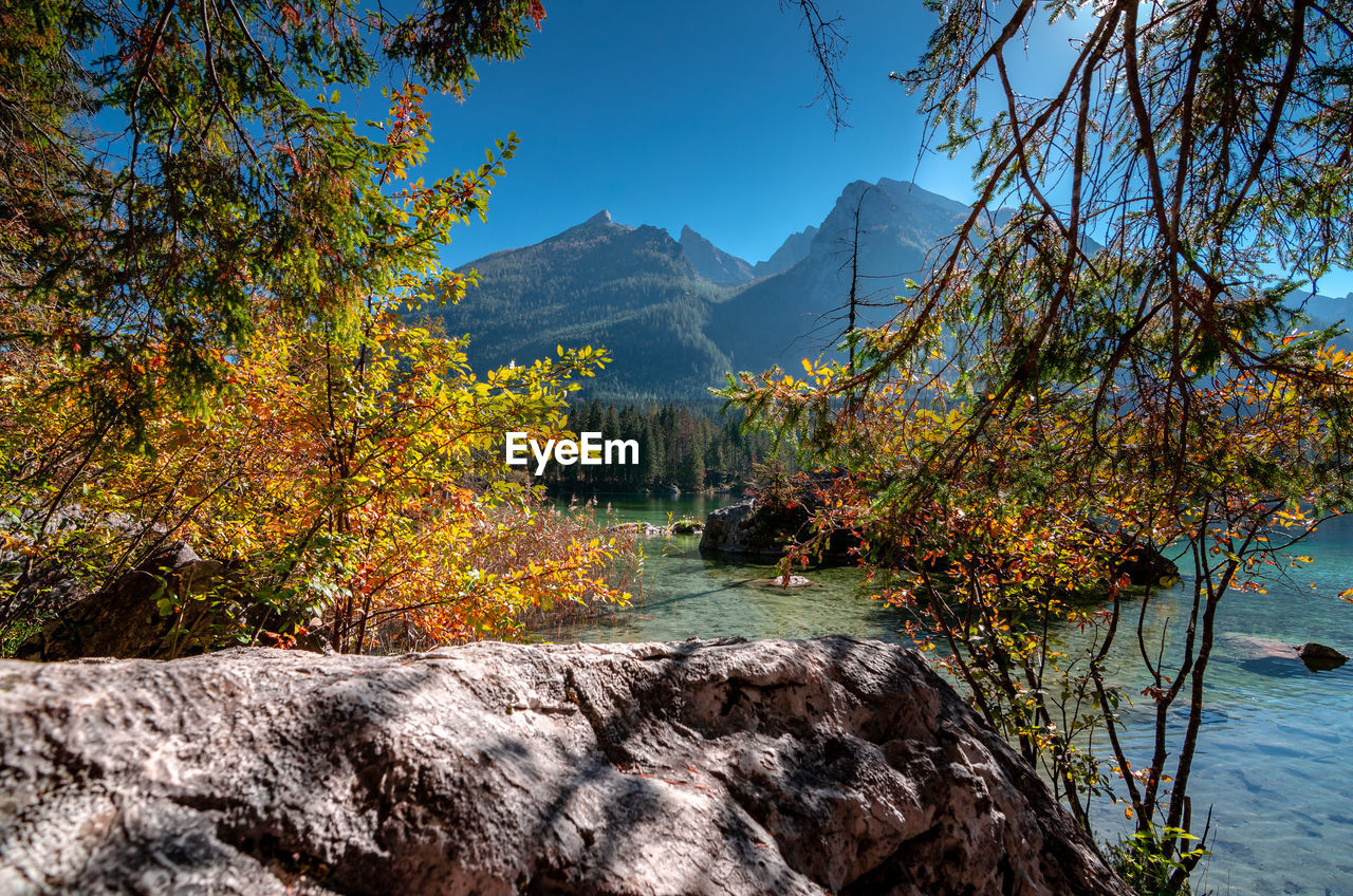 SCENIC VIEW OF LAKE DURING AUTUMN