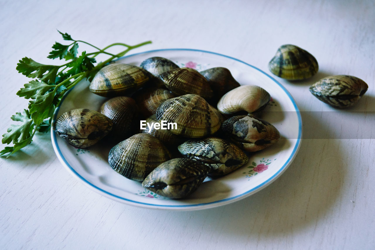 CLOSE-UP OF SNAILS IN PLATE