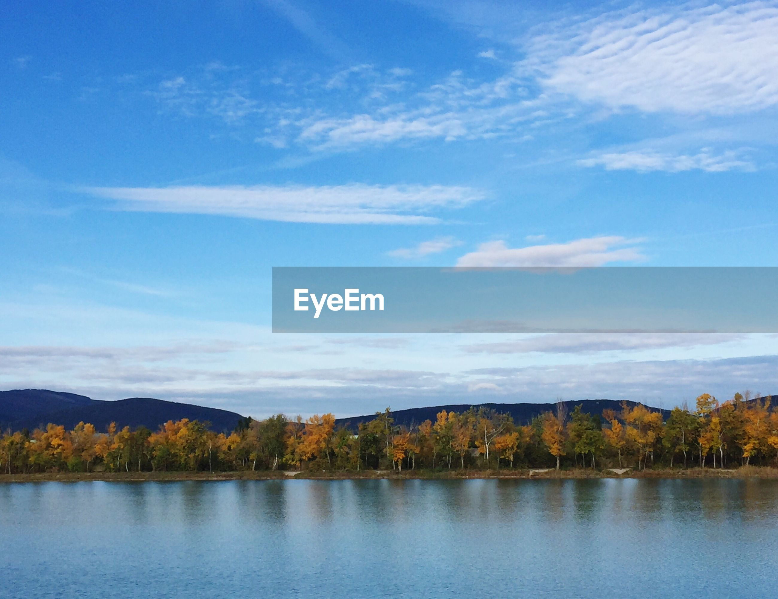 SCENIC VIEW OF LAKE AND TREES AGAINST BLUE SKY