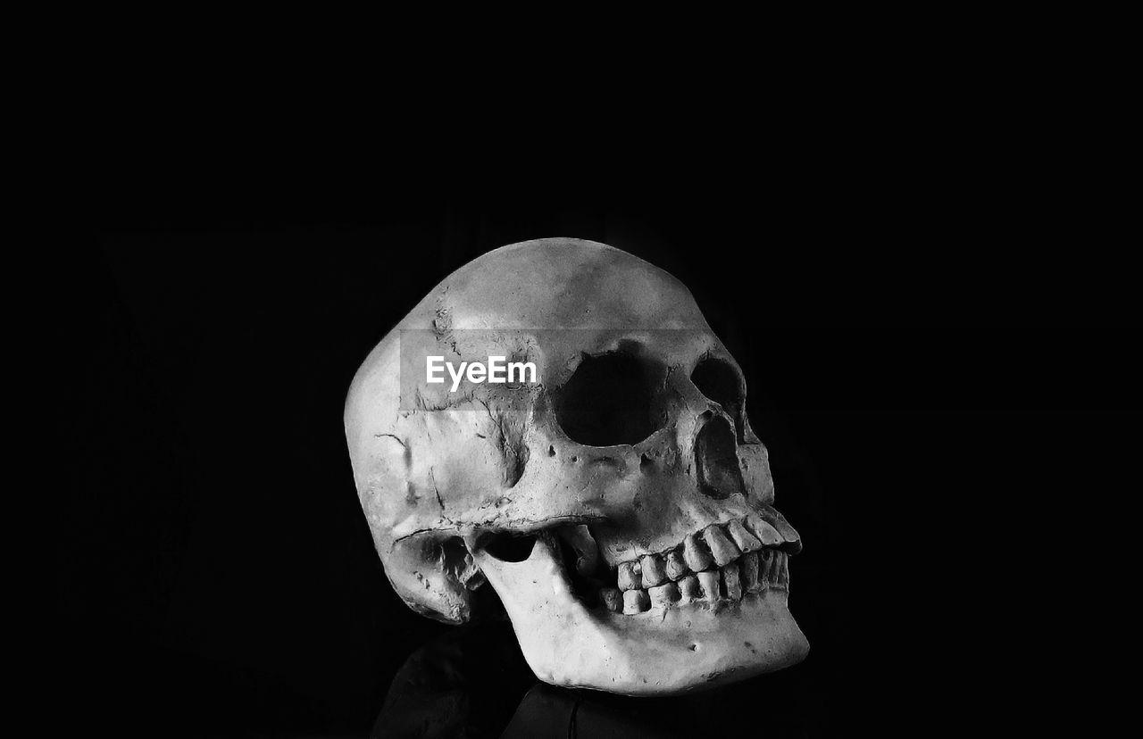 bone, human skeleton, human skull, human body part, human bone, spooky, black background, body part, fear, indoors, horror, skeleton, studio shot, close-up, skull, still life, copy space, anatomy, single object, dark, human face
