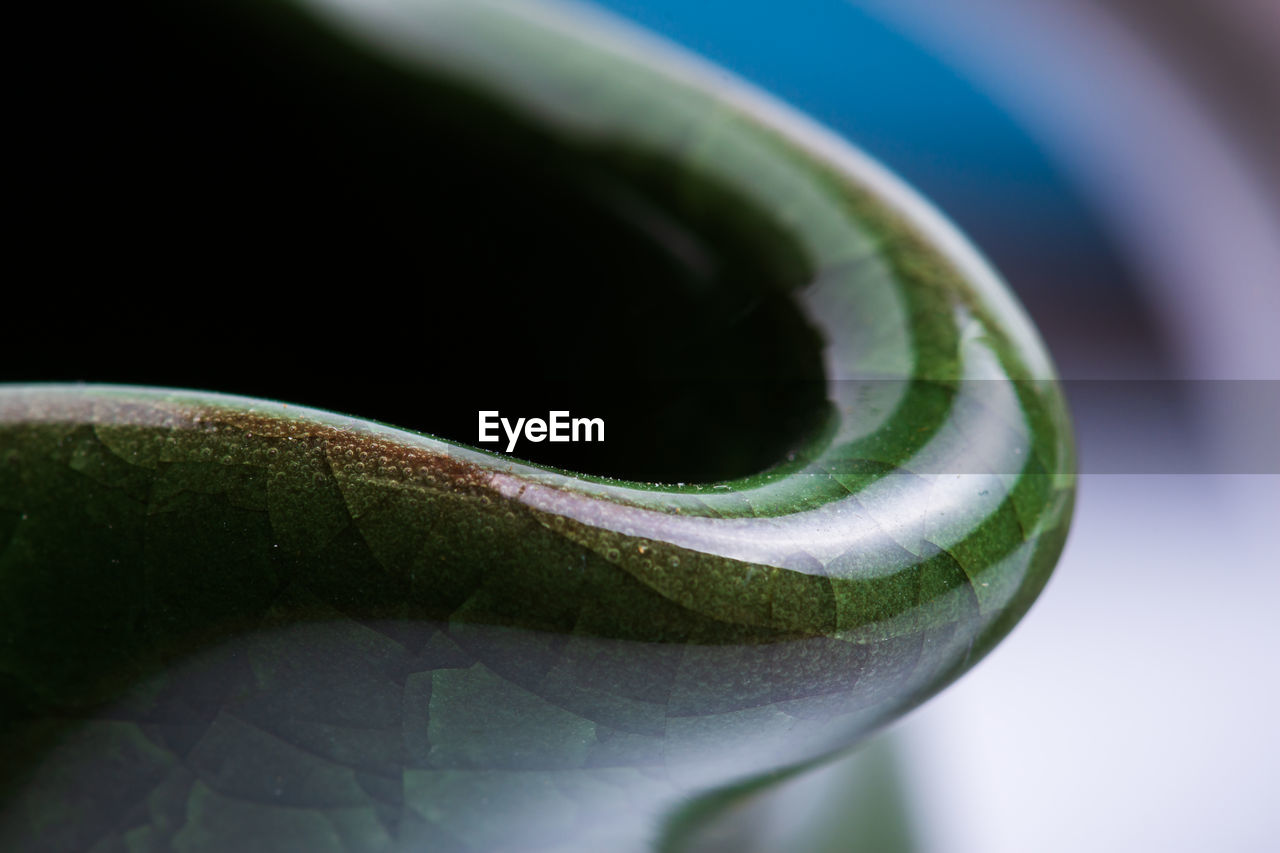 close-up, green color, selective focus, no people, plant part, leaf, nature, growth, plant, focus on foreground, beauty in nature, freshness, day, outdoors, still life, studio shot, extreme close-up, vulnerability, fragility
