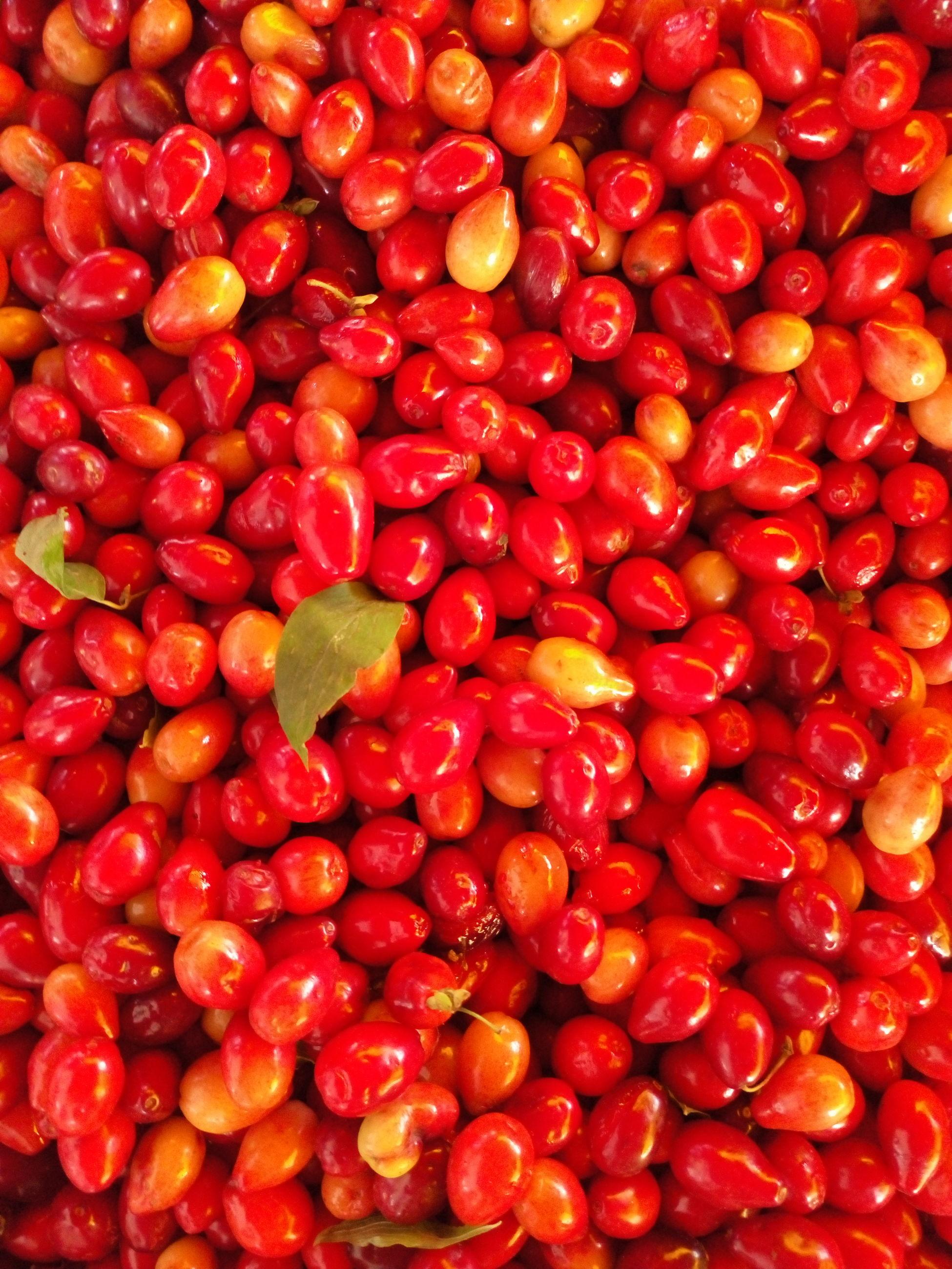 Full frame shot of cranberries at market