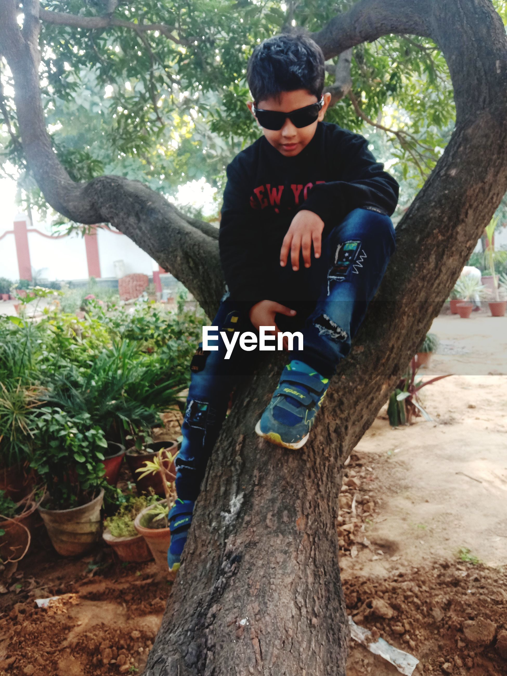 Cute boy wearing sunglasses while sitting on tree trunk