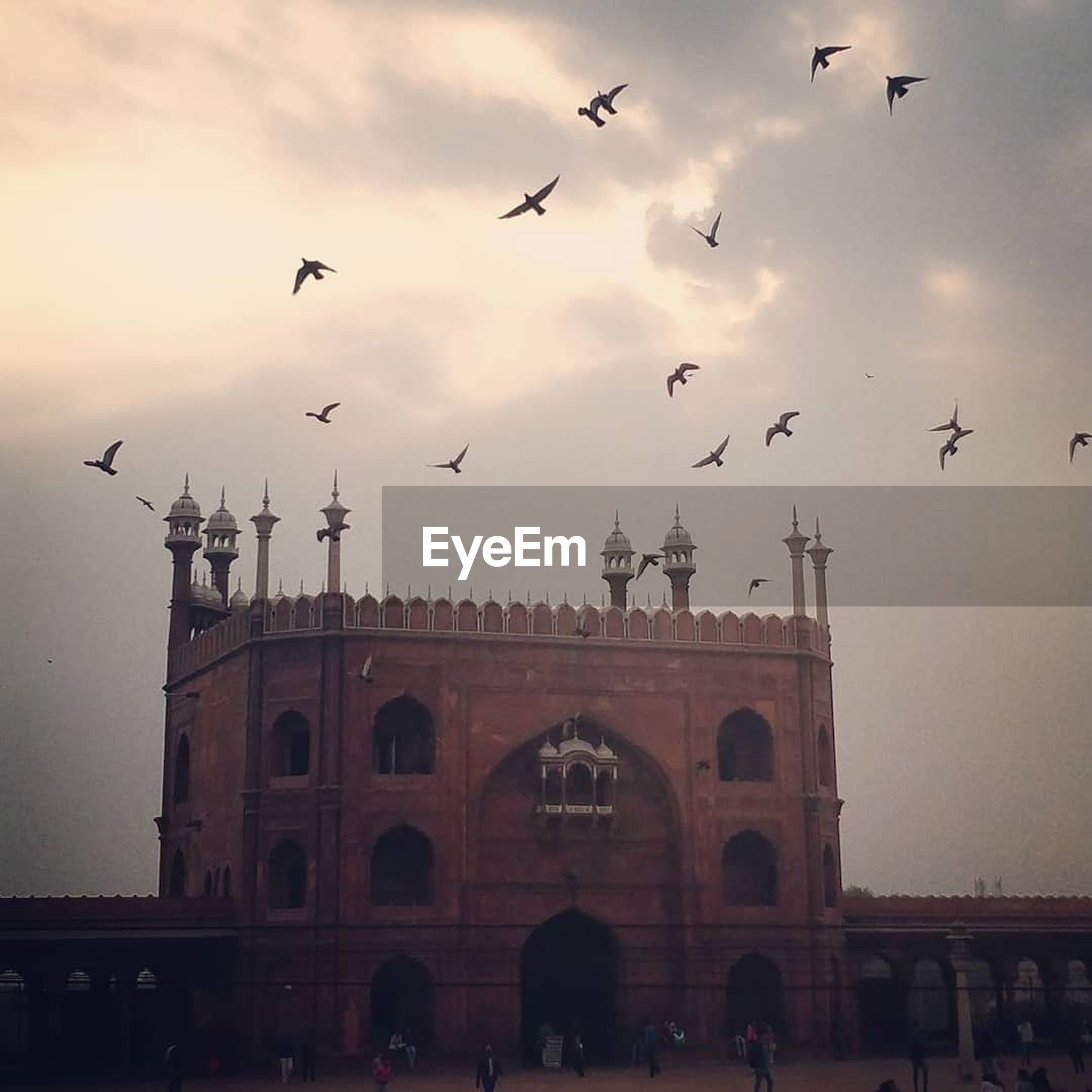 built structure, flying, architecture, building exterior, bird, travel destinations, large group of people, silhouette, large group of animals, low angle view, sky, tourism, outdoors, flock of birds, sunset, men, animals in the wild, statue, day, city, spread wings, people